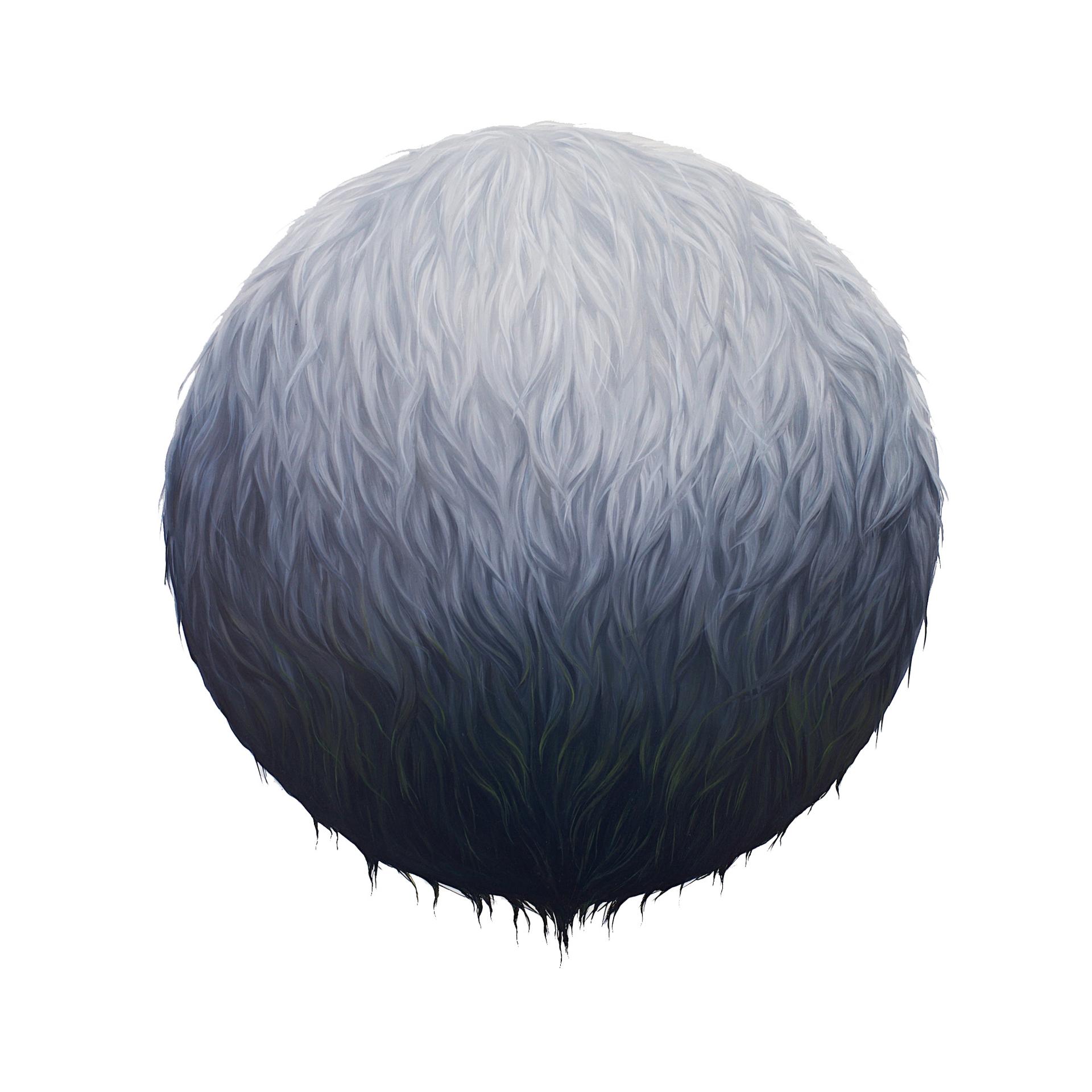 Shroud by Ashley Eliza Williams