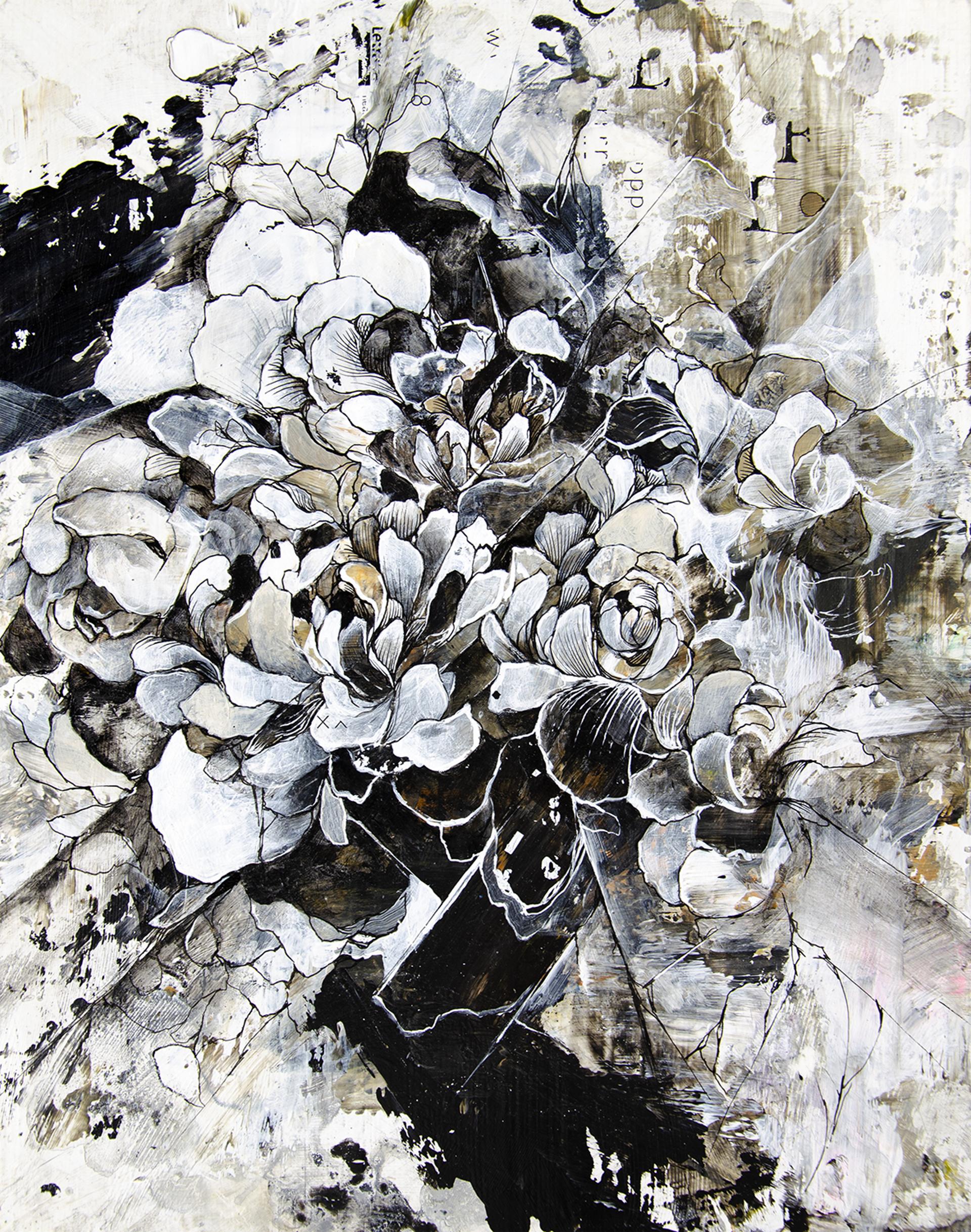 Floral Study I by Aiden Kringen