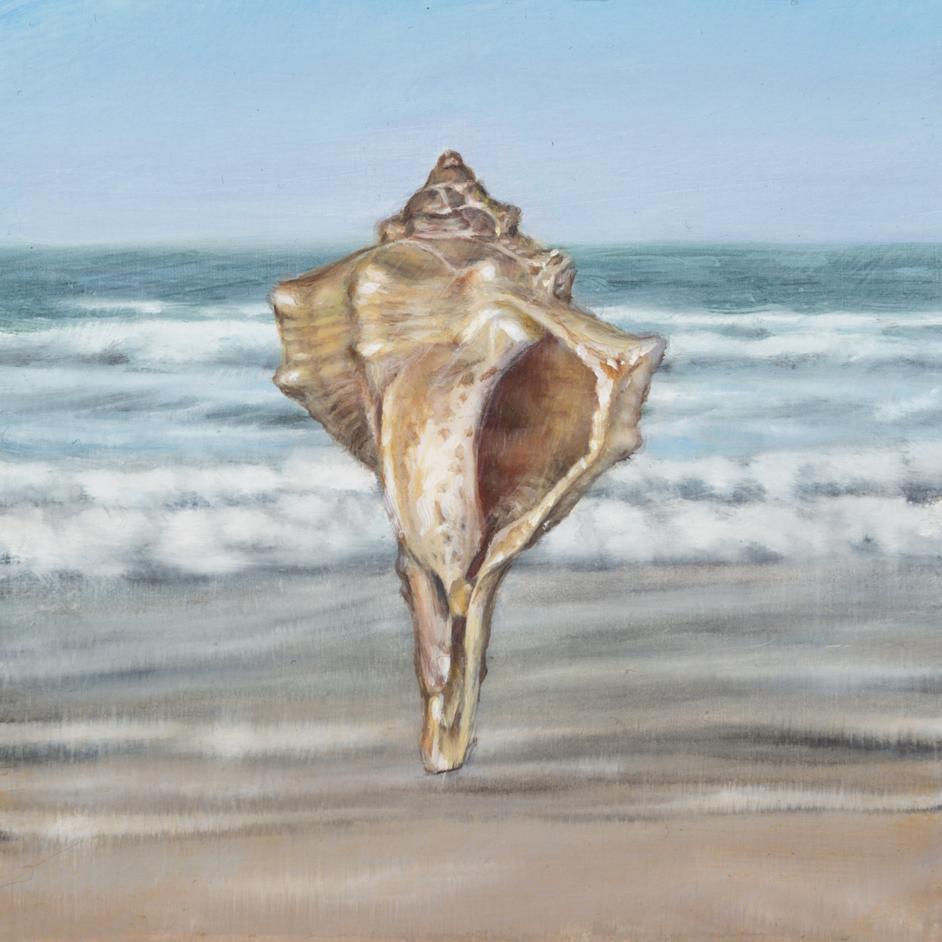 Shell 3 by Gregory Block
