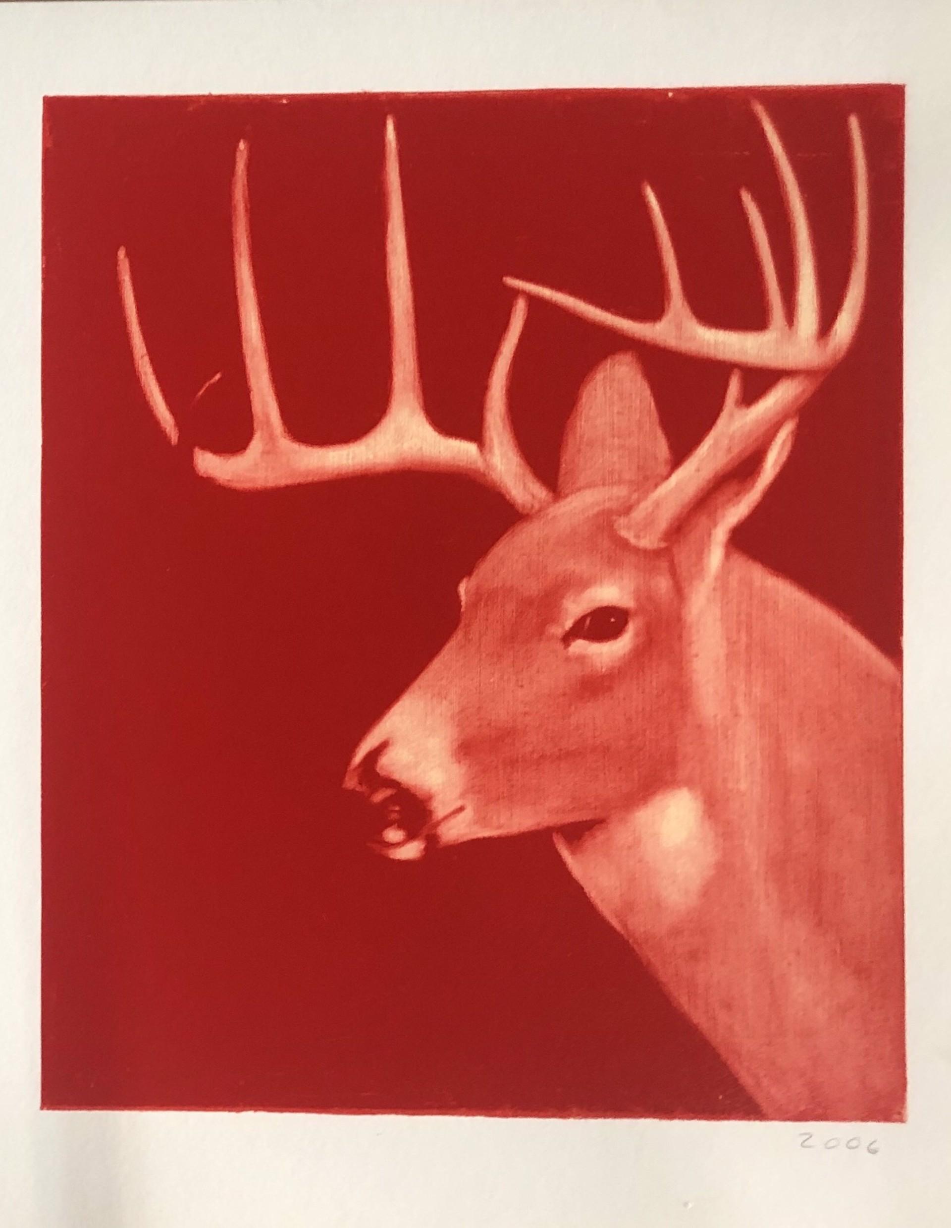 Elk by Joe Andoe