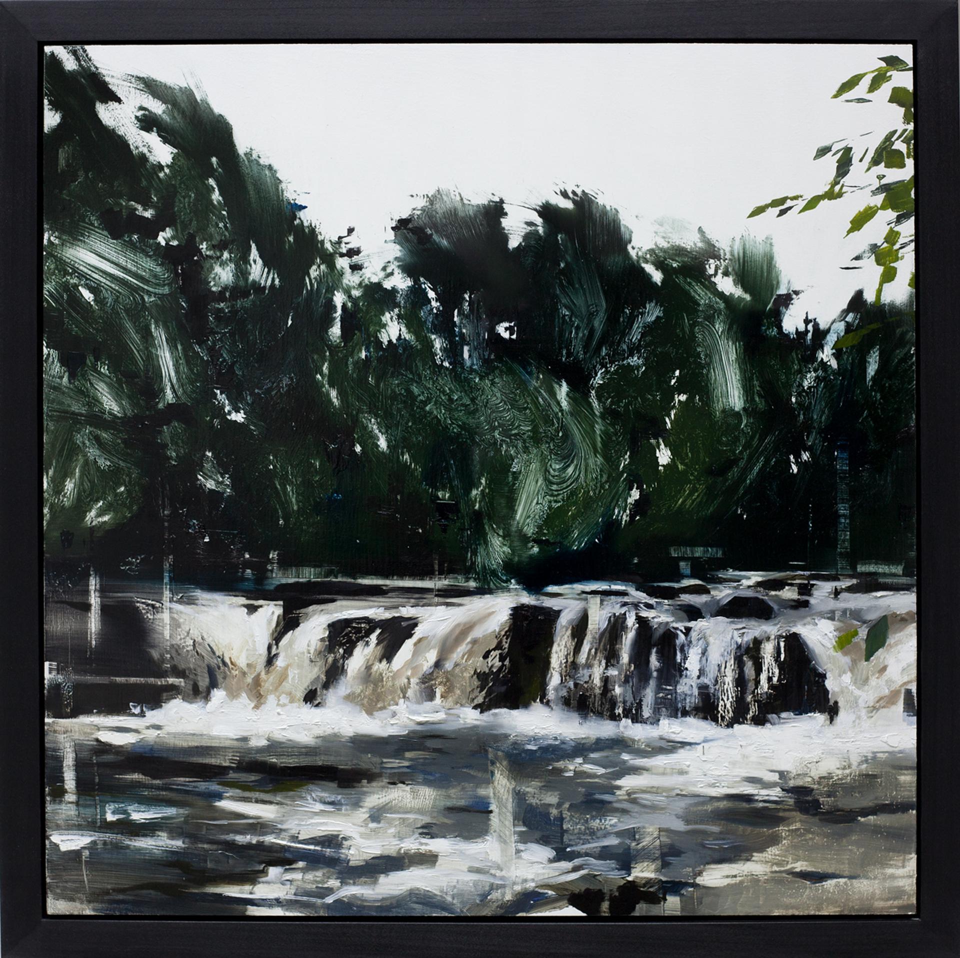 Woodland Waters by Jon Doran