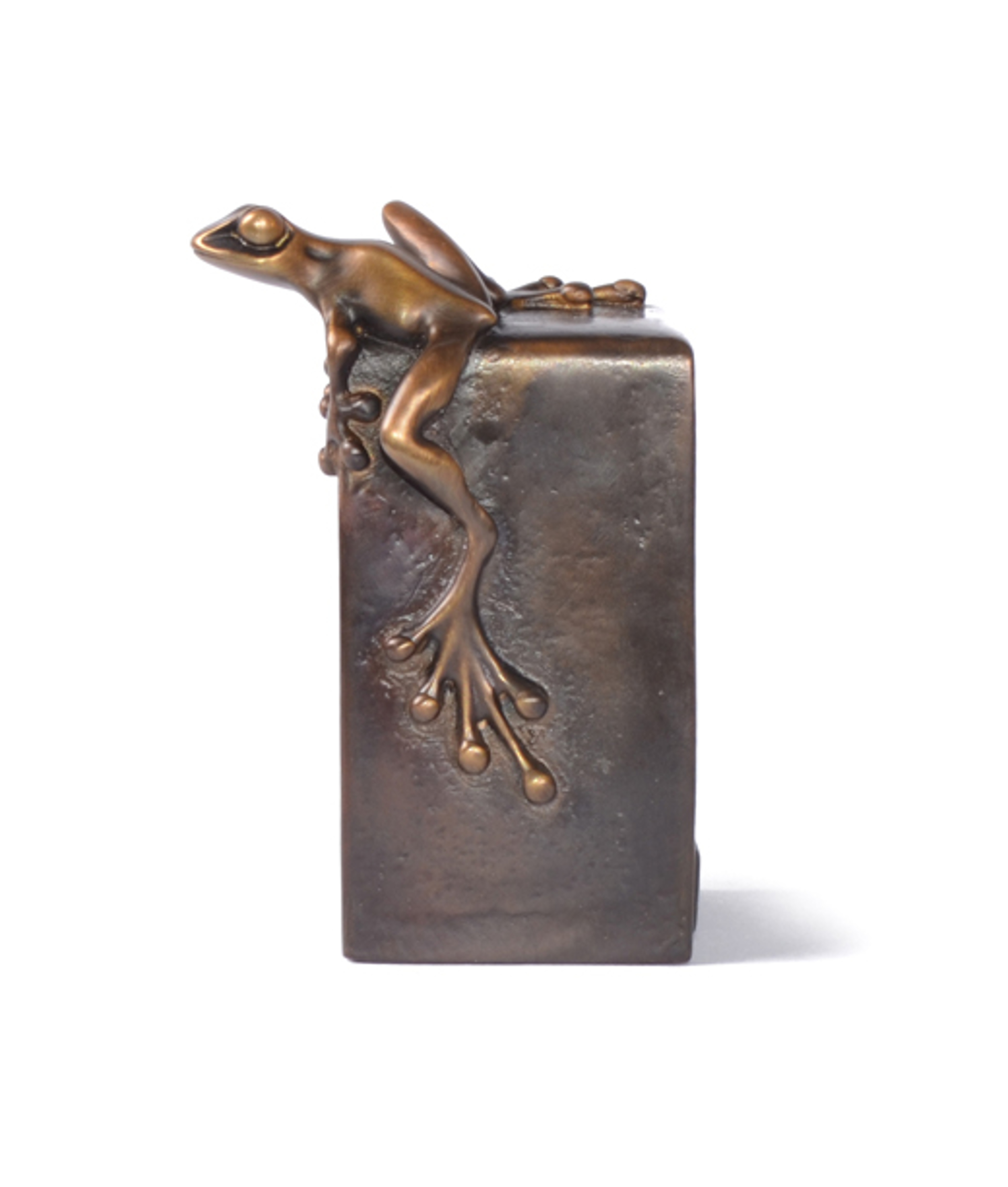 Paperweight Vertical by The Frogman