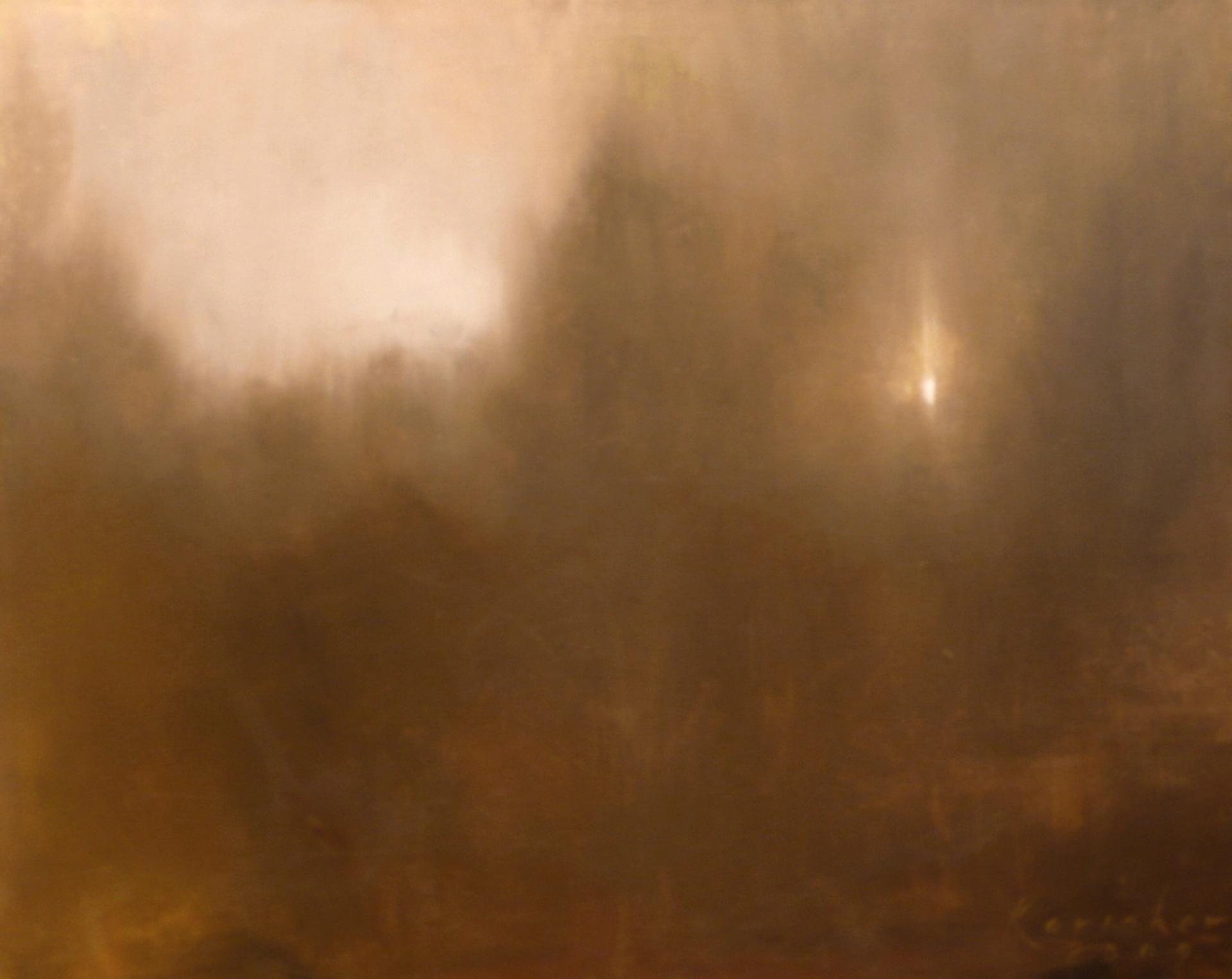 Tree Light by Tobin G Karicher