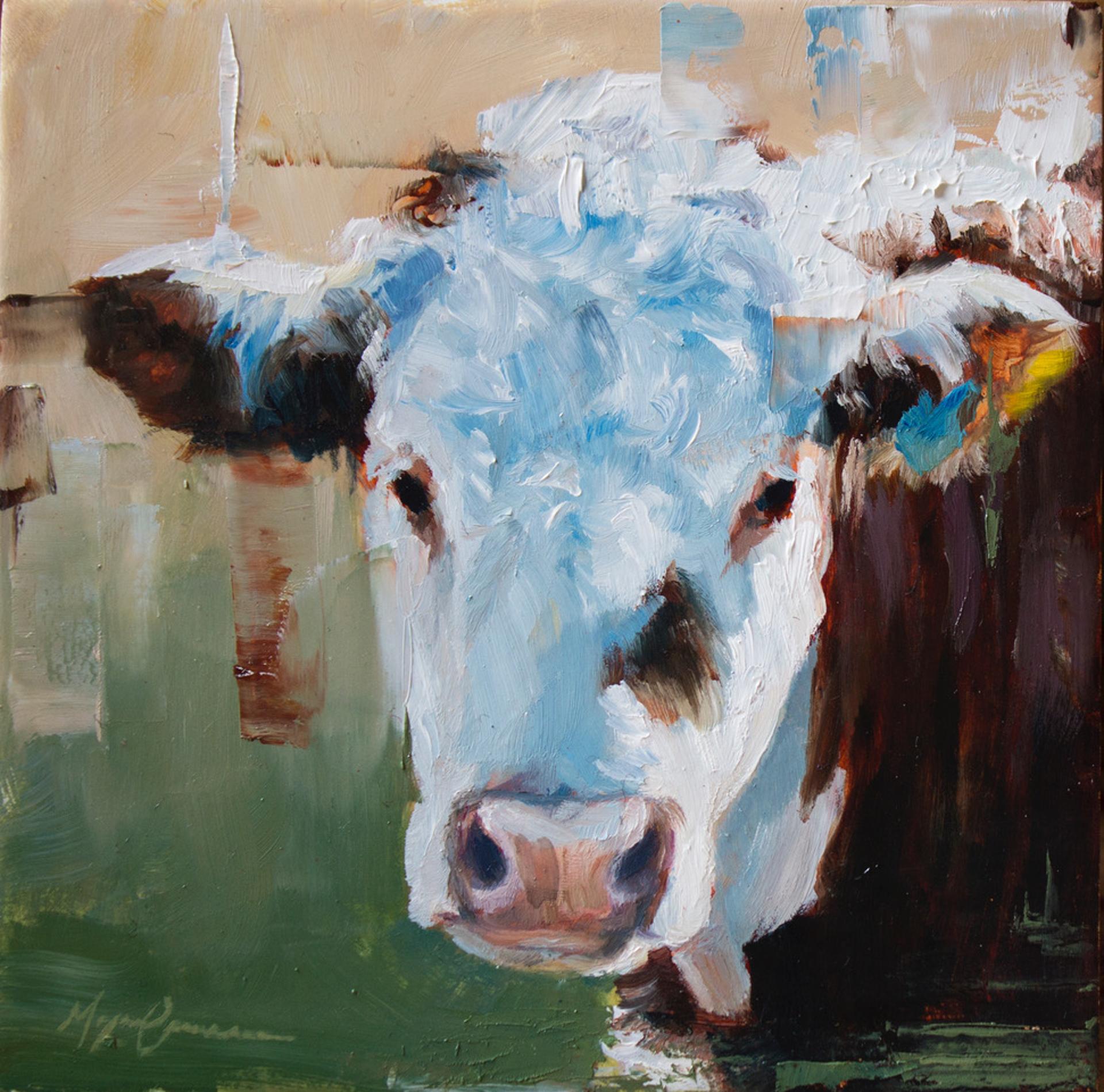 Cow Portrait I by Morgan Cameron