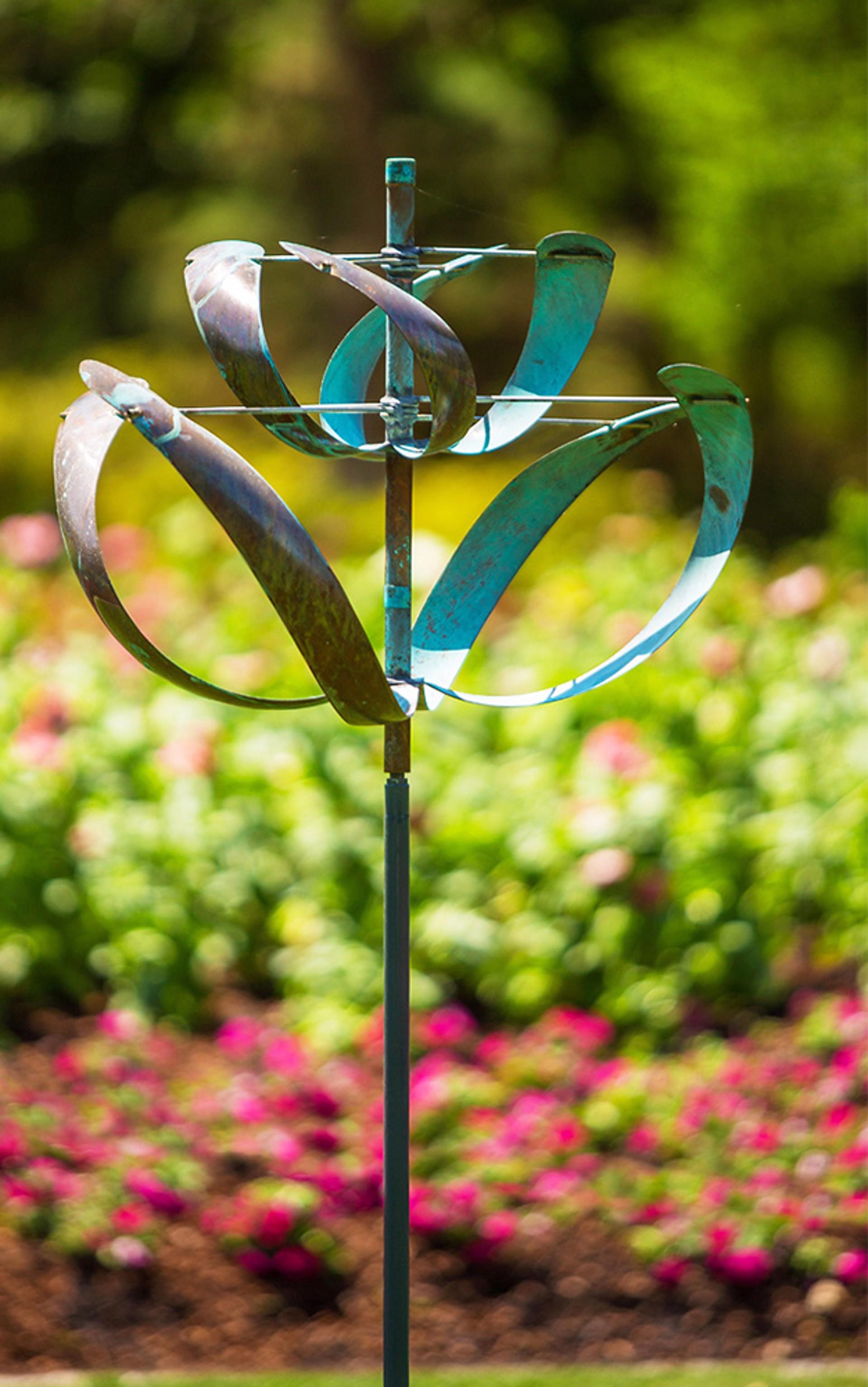 Windflower by Lyman Whitaker