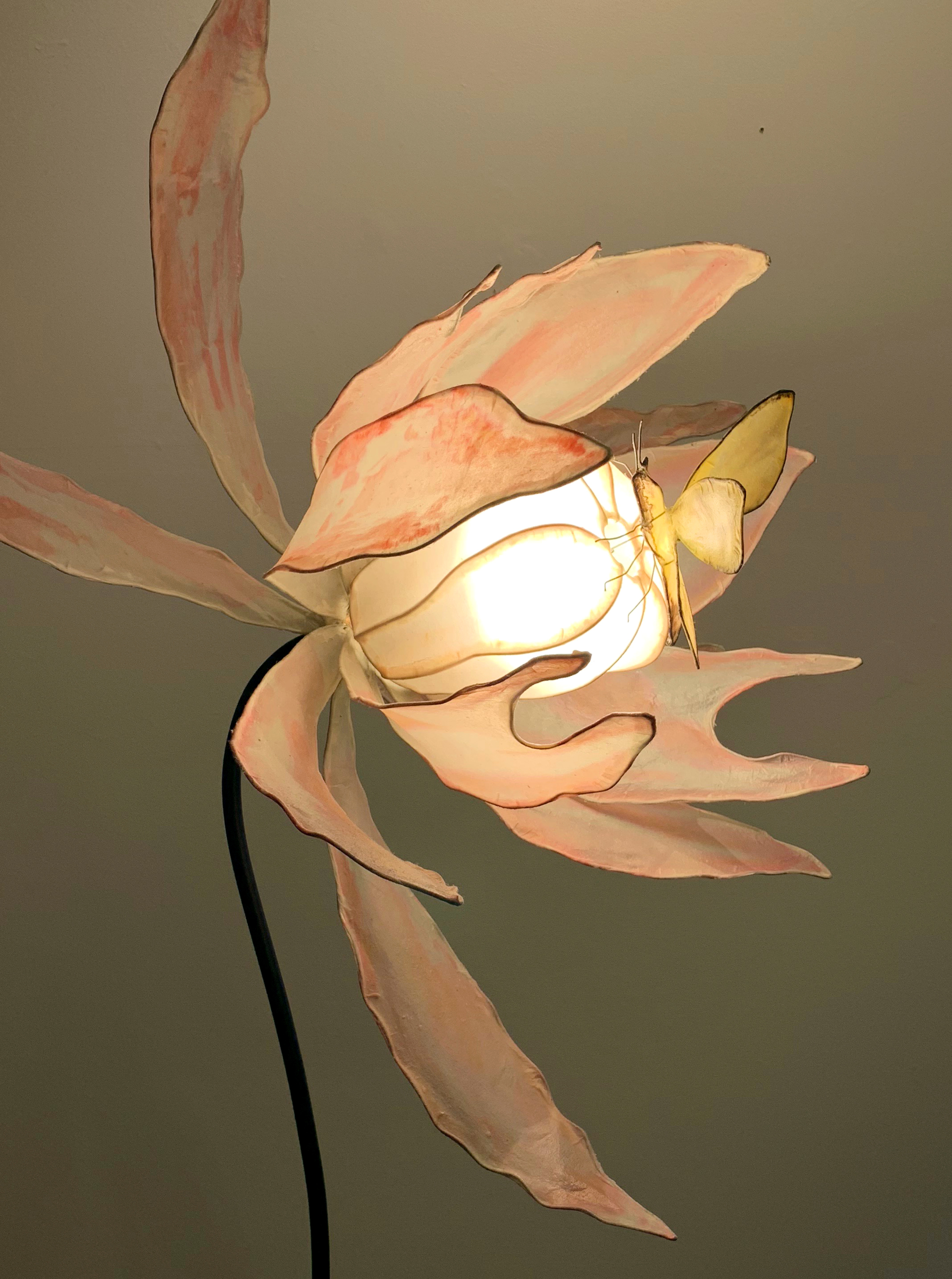 Moth + Poppy / Looking for Nectar by HiiH Lights