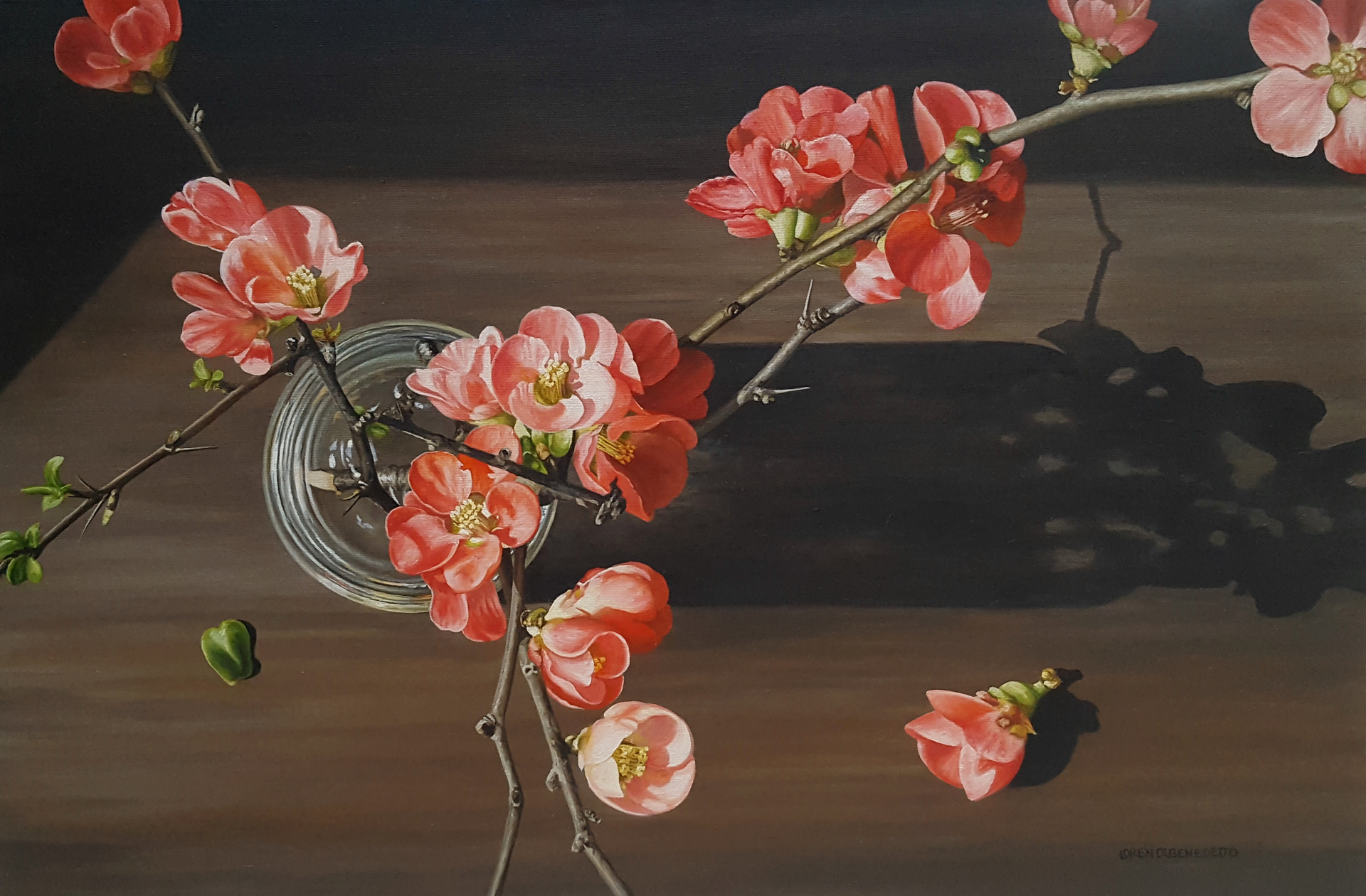 Flowering Quince by Loren DiBenedetto, OPA