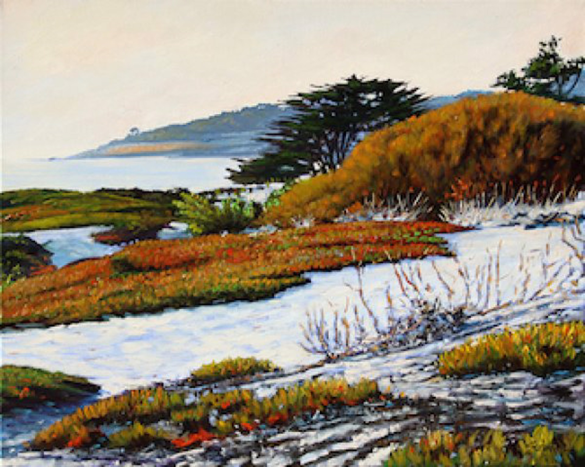 Colors Of Carmel by Tom Swimm