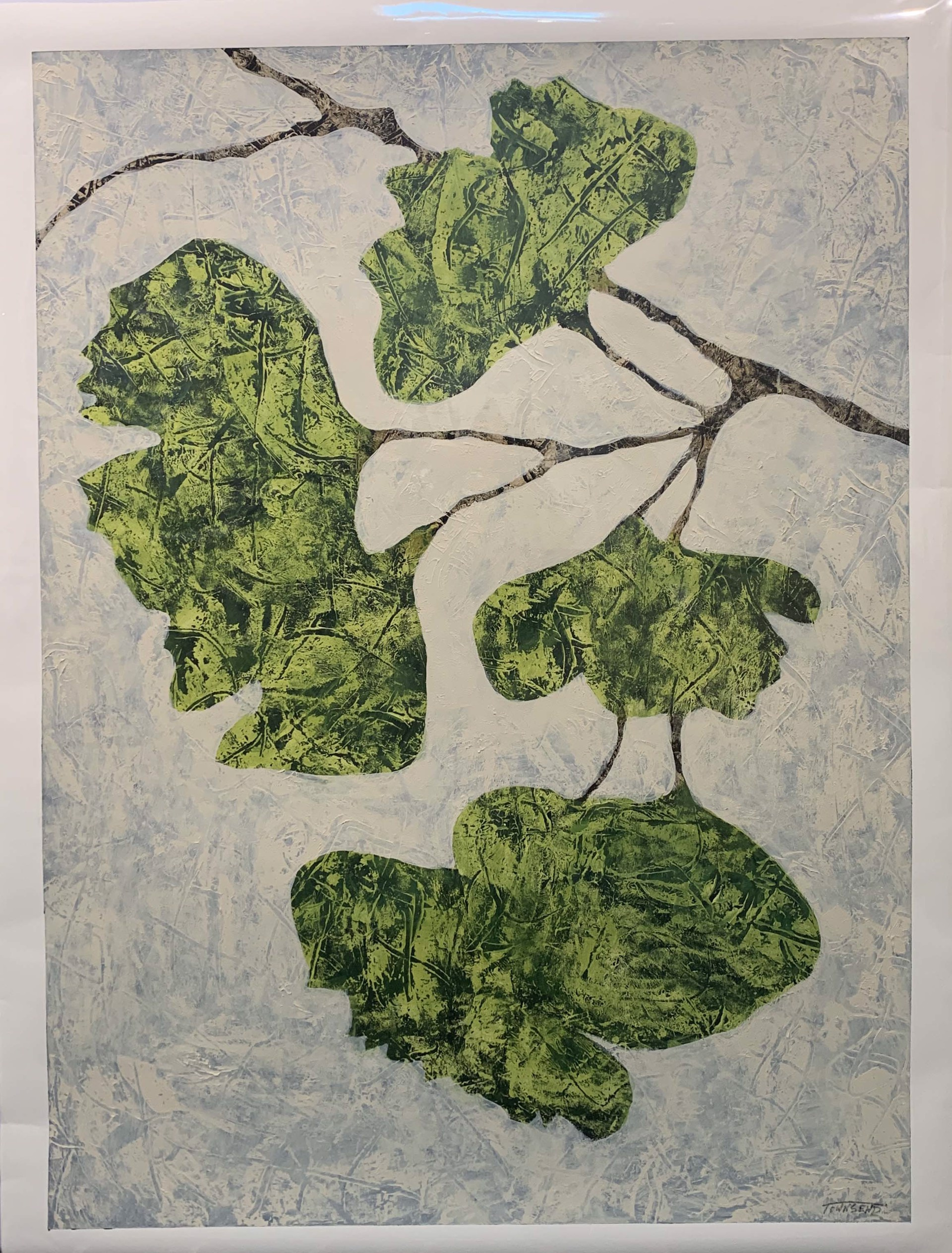Ginkgo Leaves by John Townsend