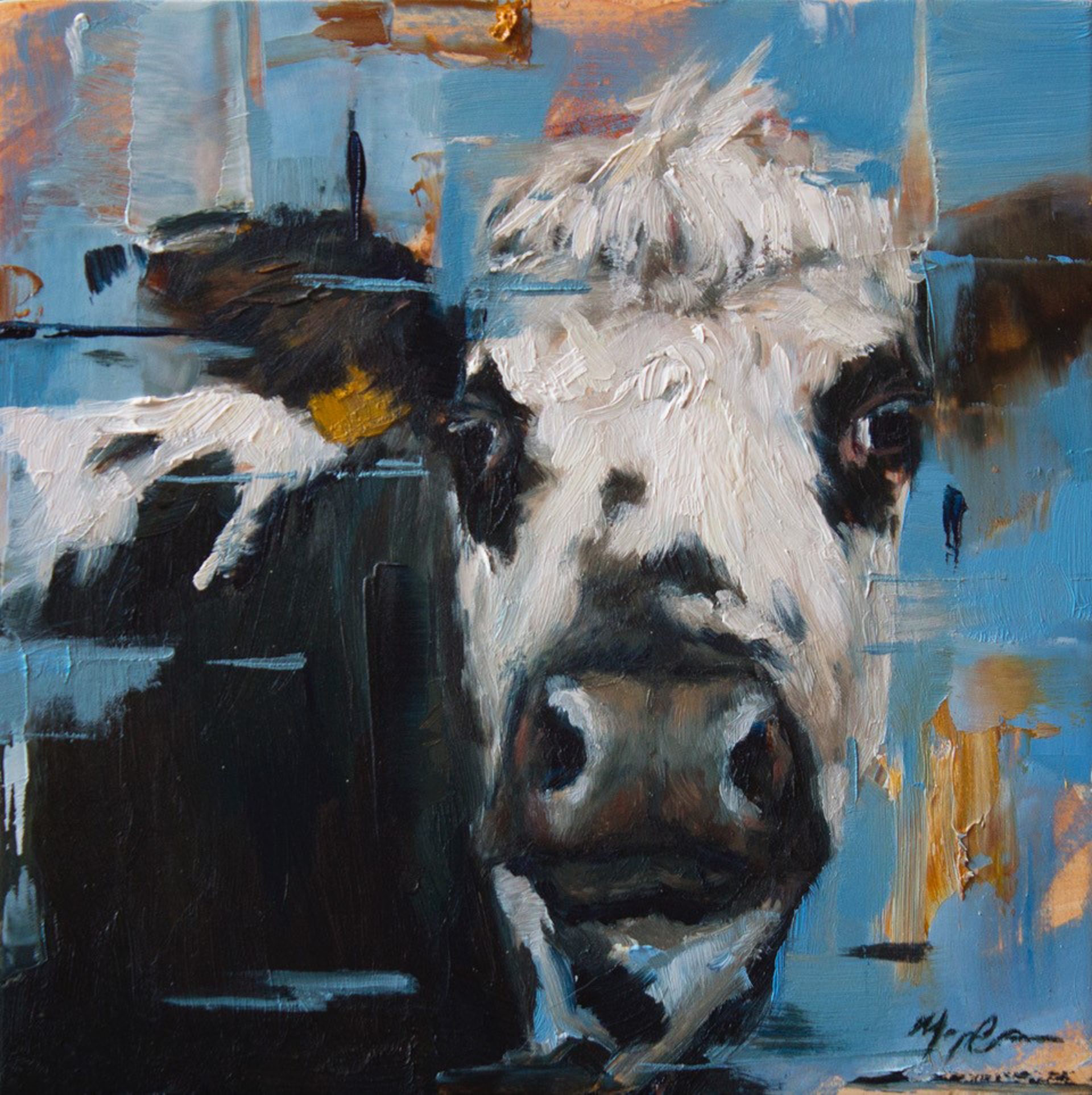 Blue Cow Portrait by Morgan Cameron