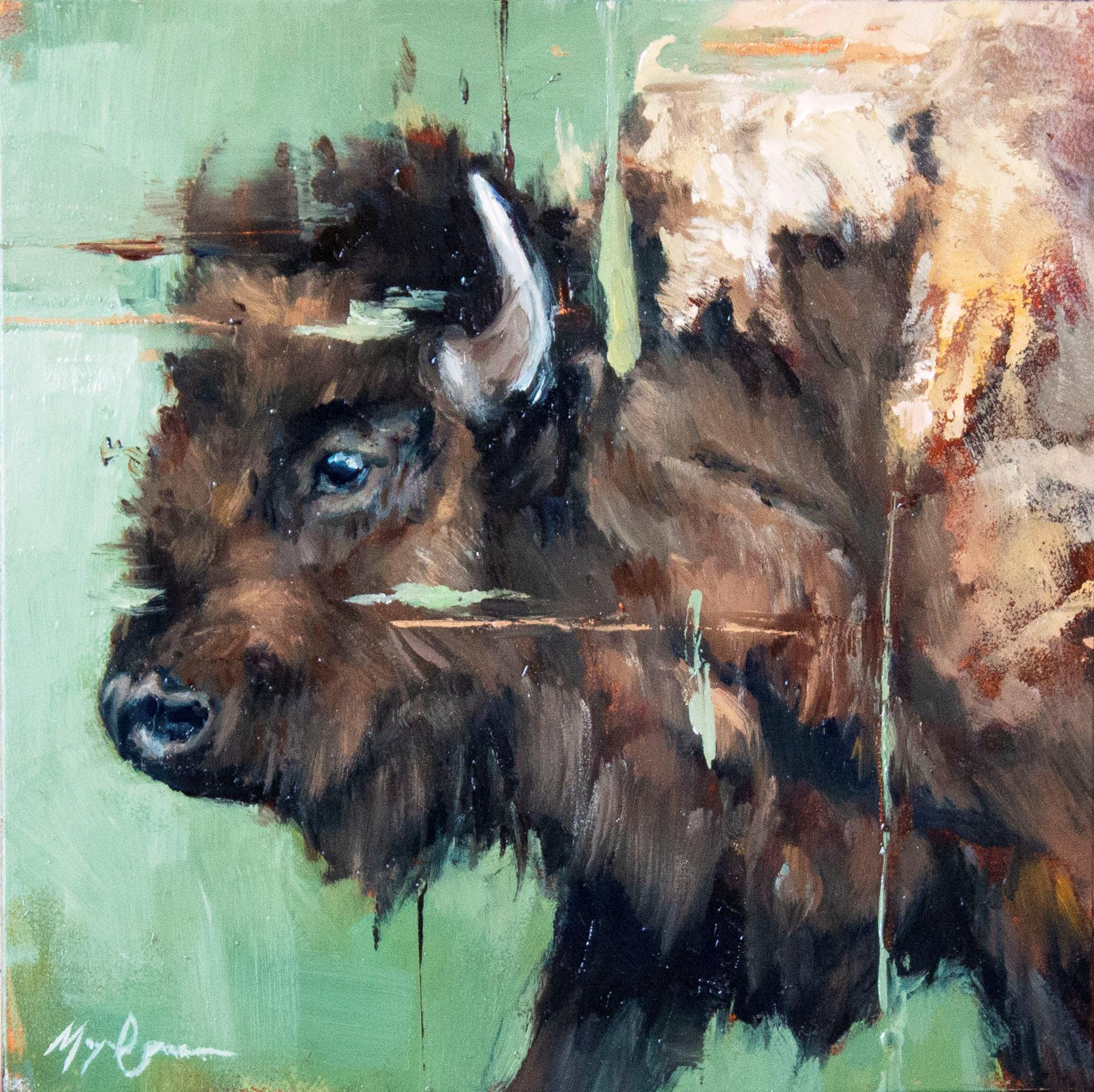 Summer Bison Cow by Morgan Cameron