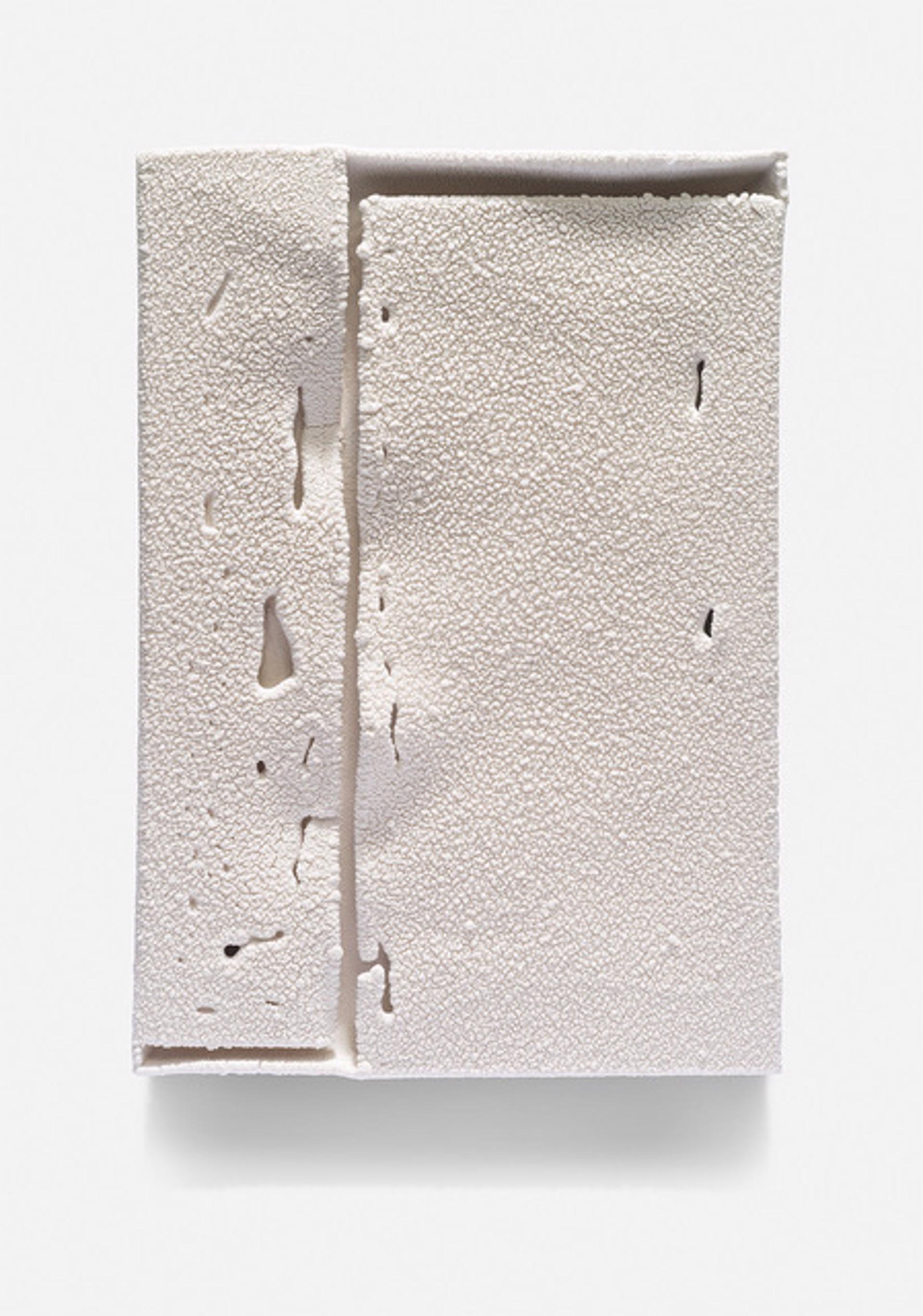 Parfleche (w13) by Cary Esser