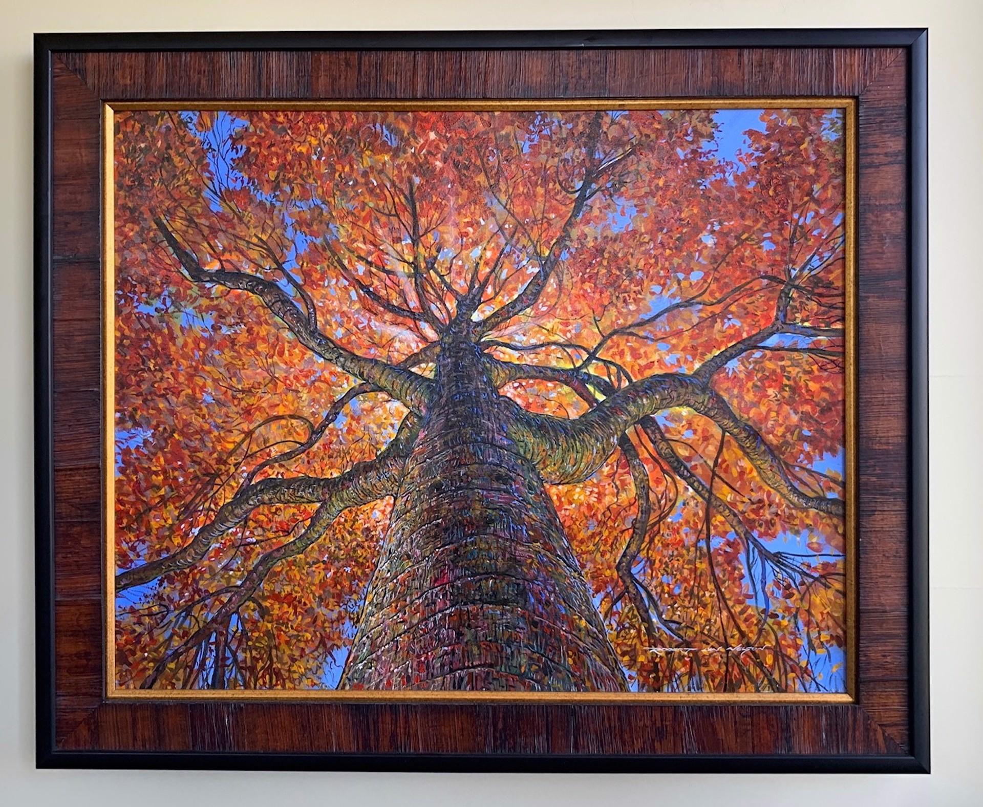 Climb A Tree by Robert Lyn Nelson