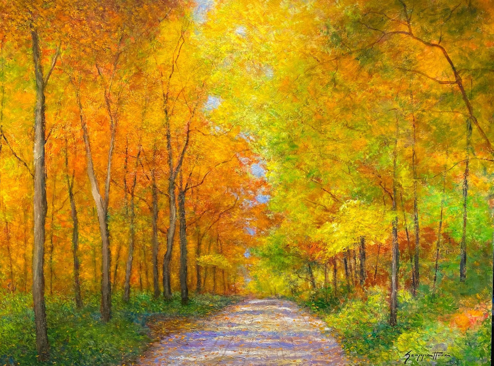 An Autumn Lane II by James Scoppettone