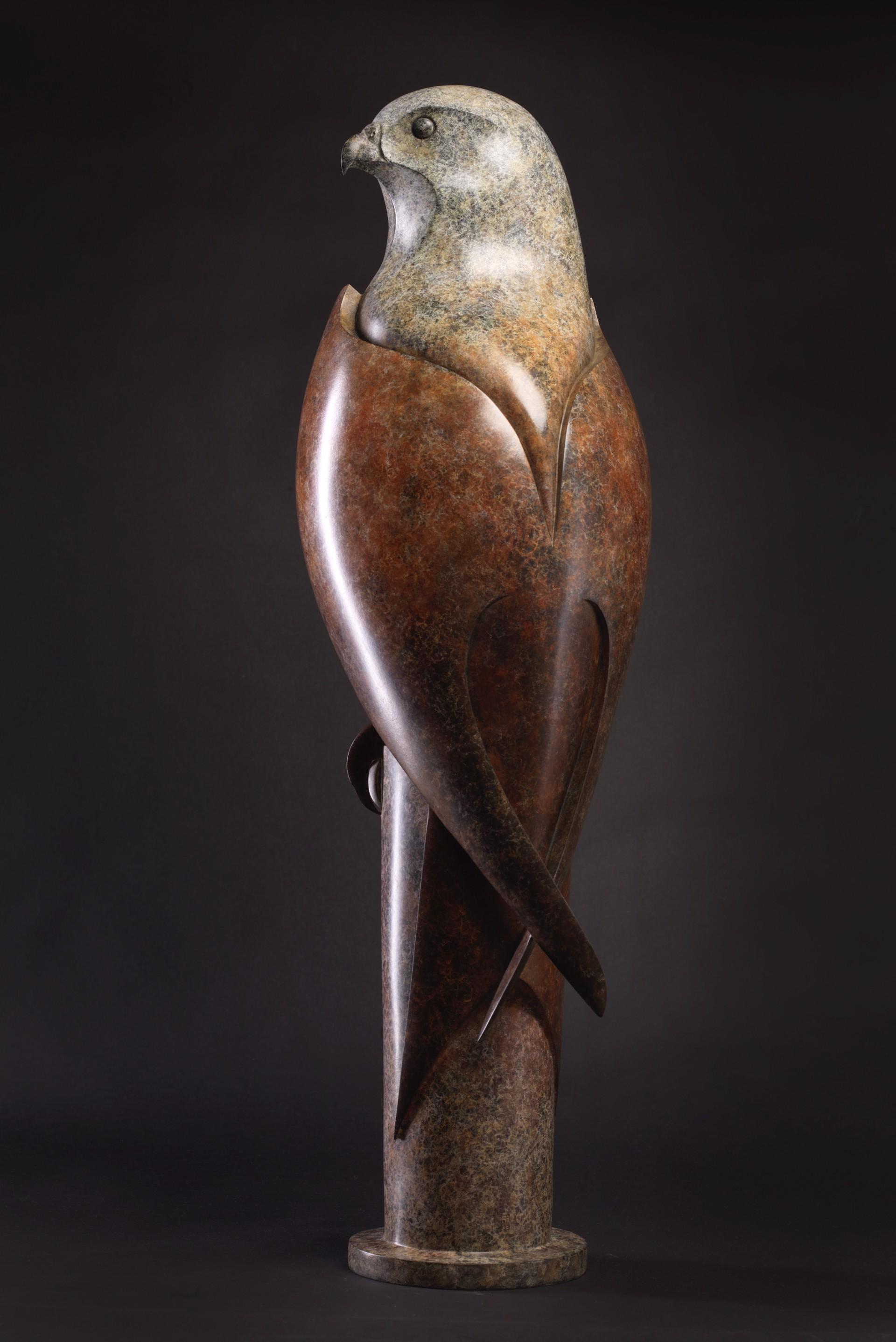Red Kite by Paul Harvey