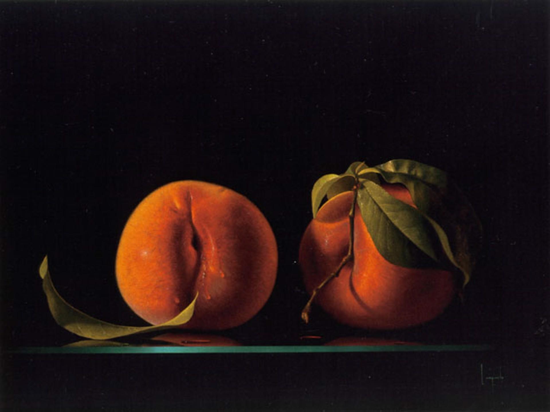 Adam And Eve by Dario Campanile
