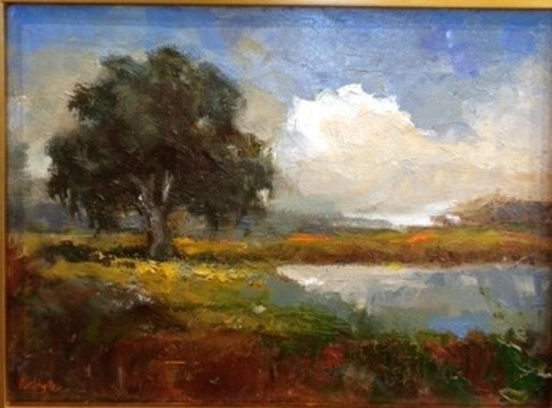 Marsh Oak by Jim Darlington