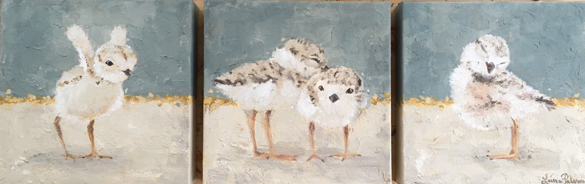 Piping Plovers ~ Triptych  by Laura Palermo - Giclee Prints