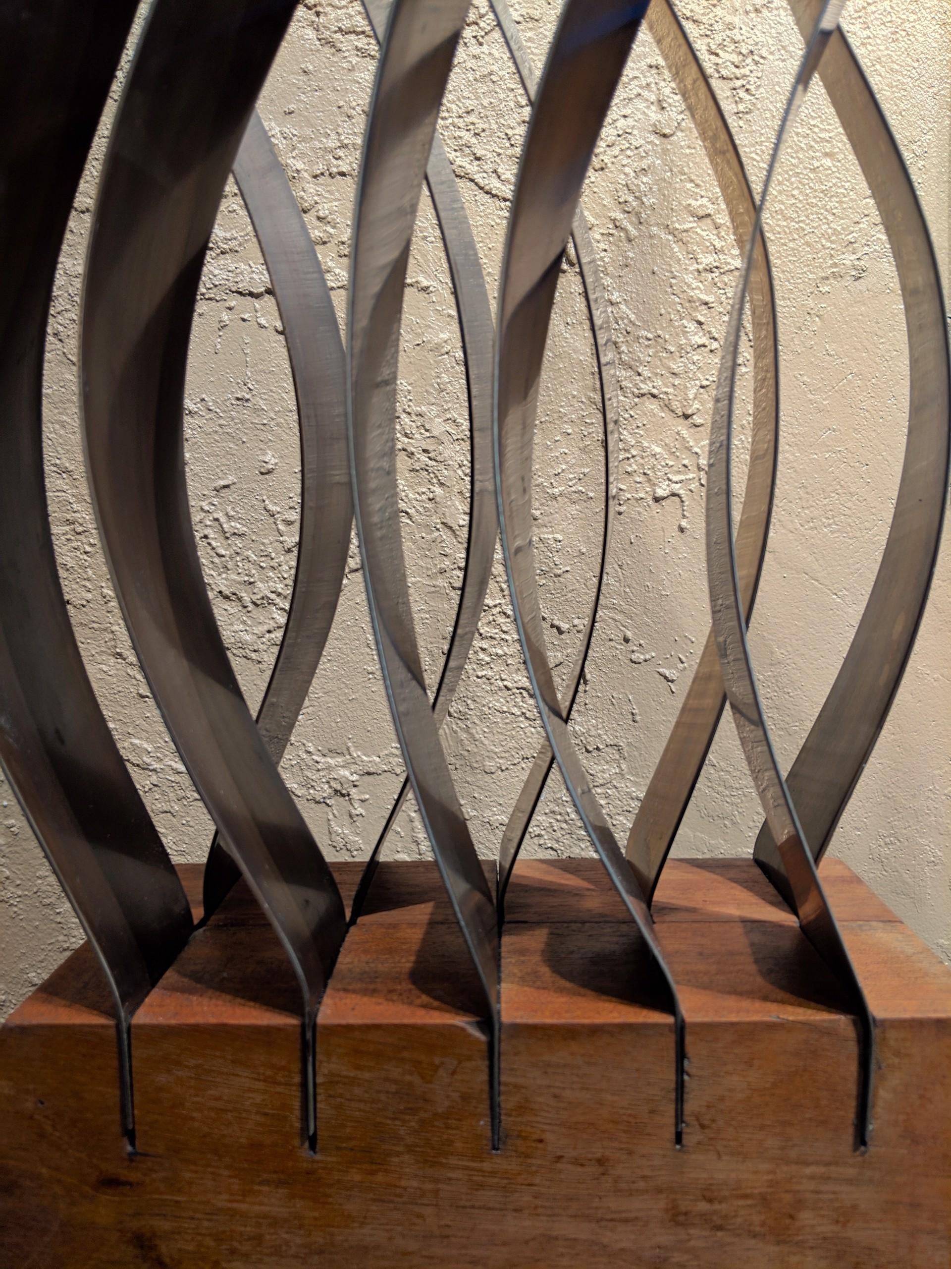 Interference Pattern by Susan Latham