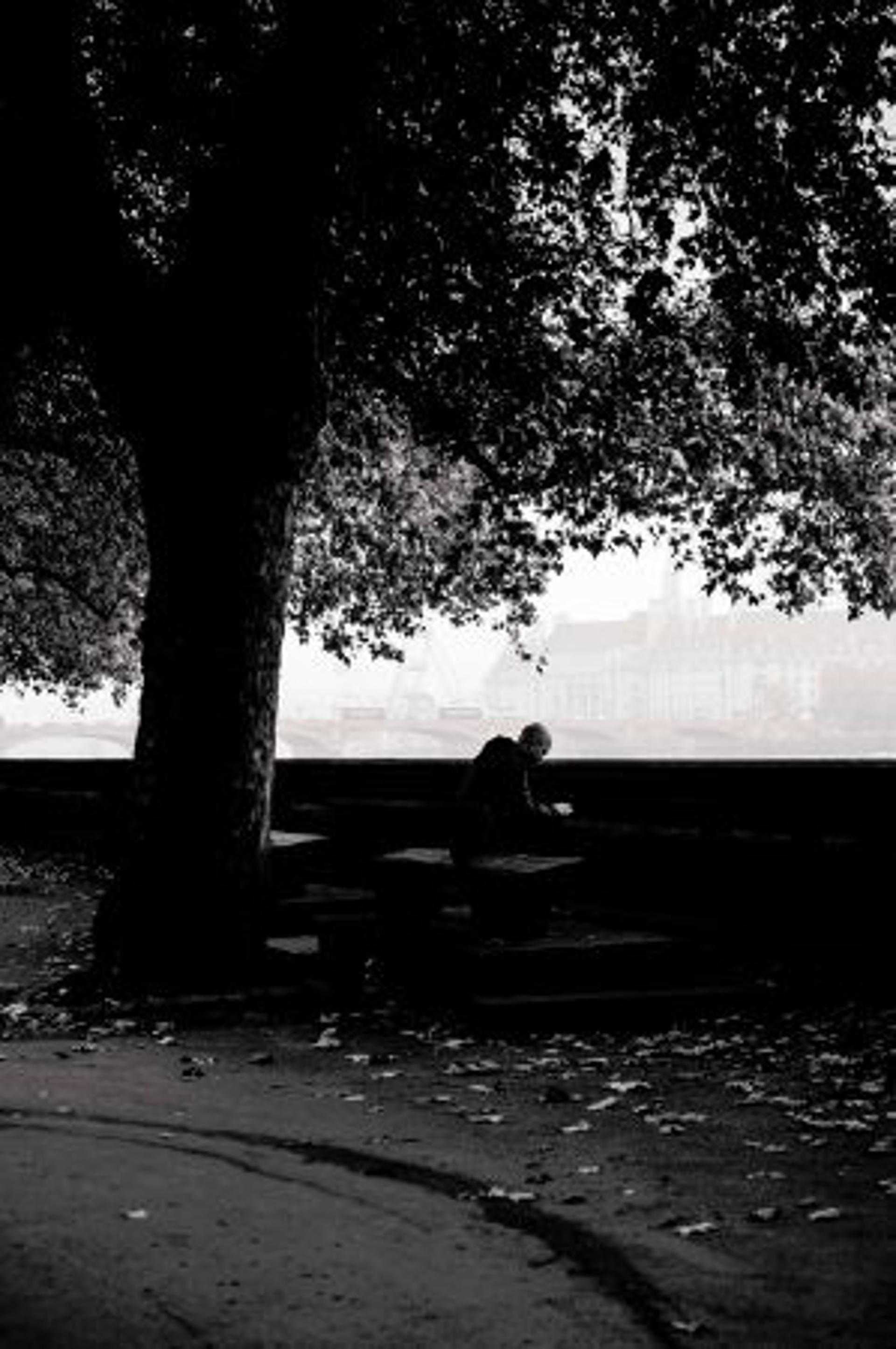 london fog IV by Alex Nyerges