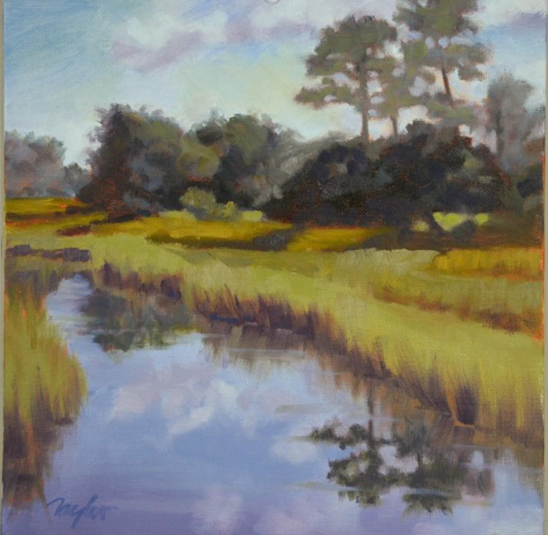 Reflections on a Sunny Day by Nancy Taylor