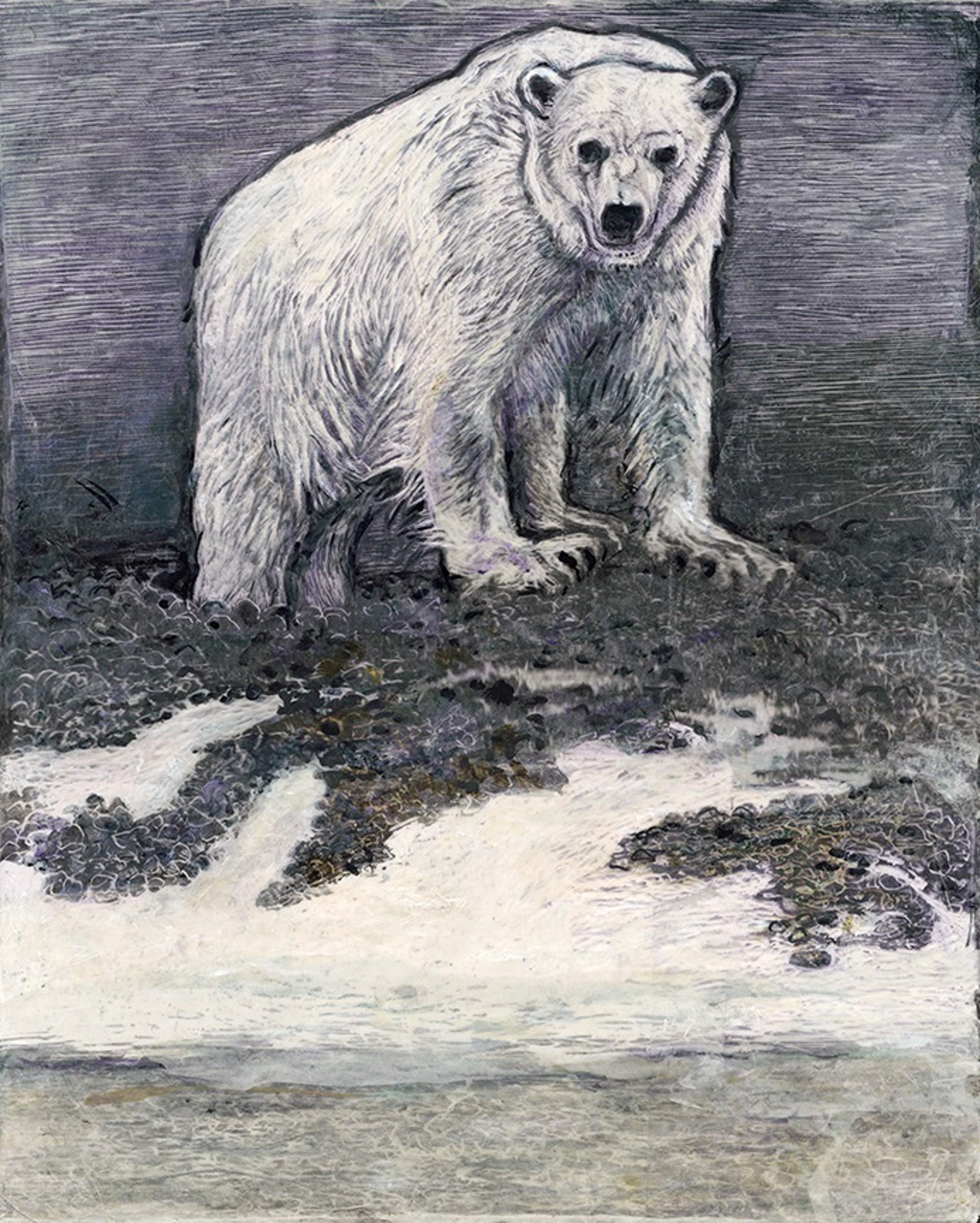 Polar Bear by Rosemary Feit Covey