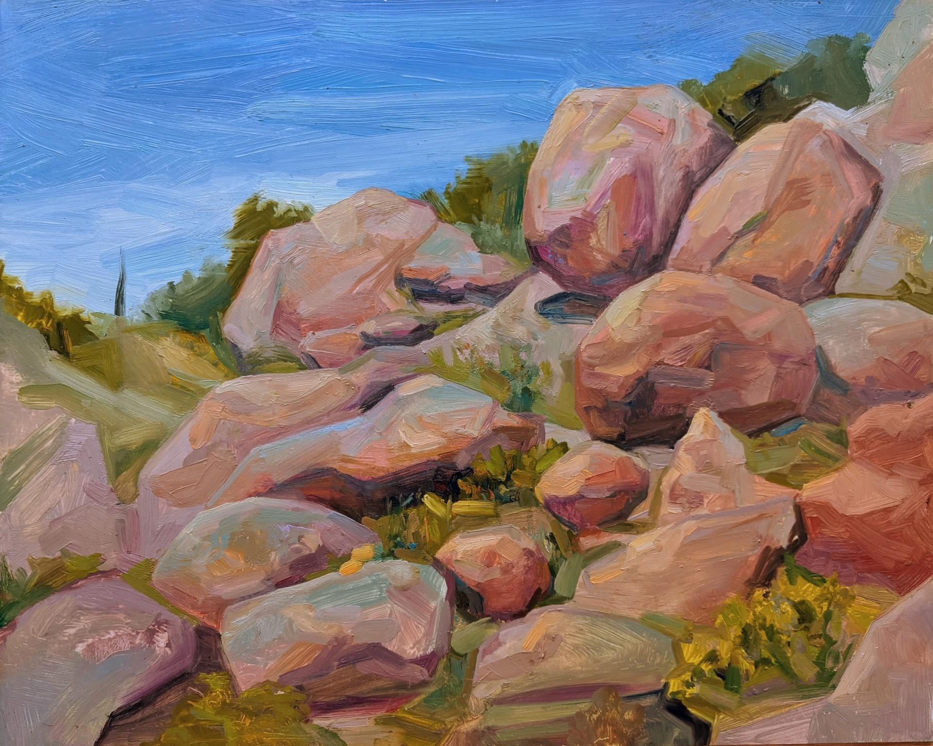Rocky Forms by Charis Carmichael Braun