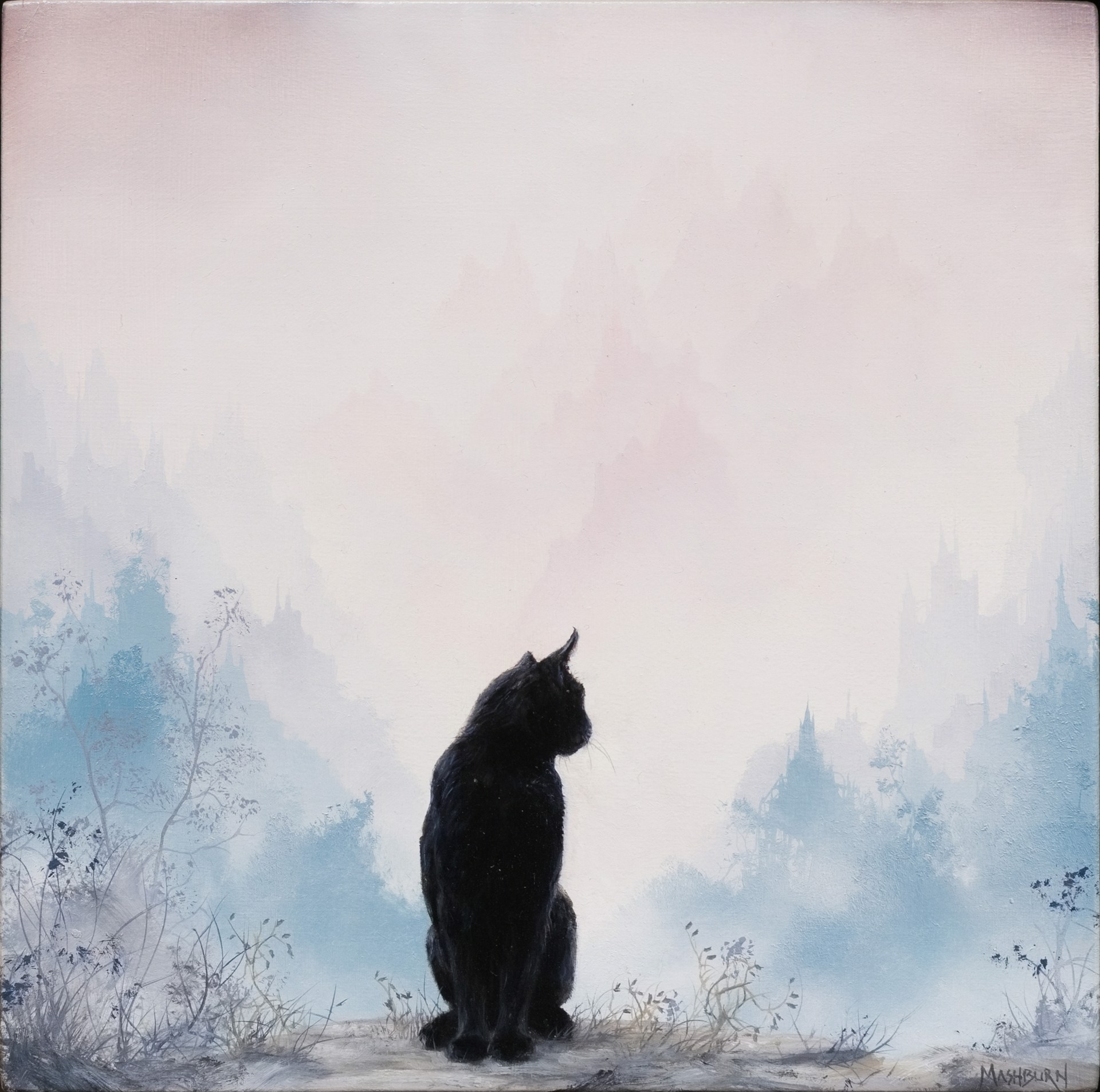 Black Cat Looking Over His Shoulder by Brian Mashburn