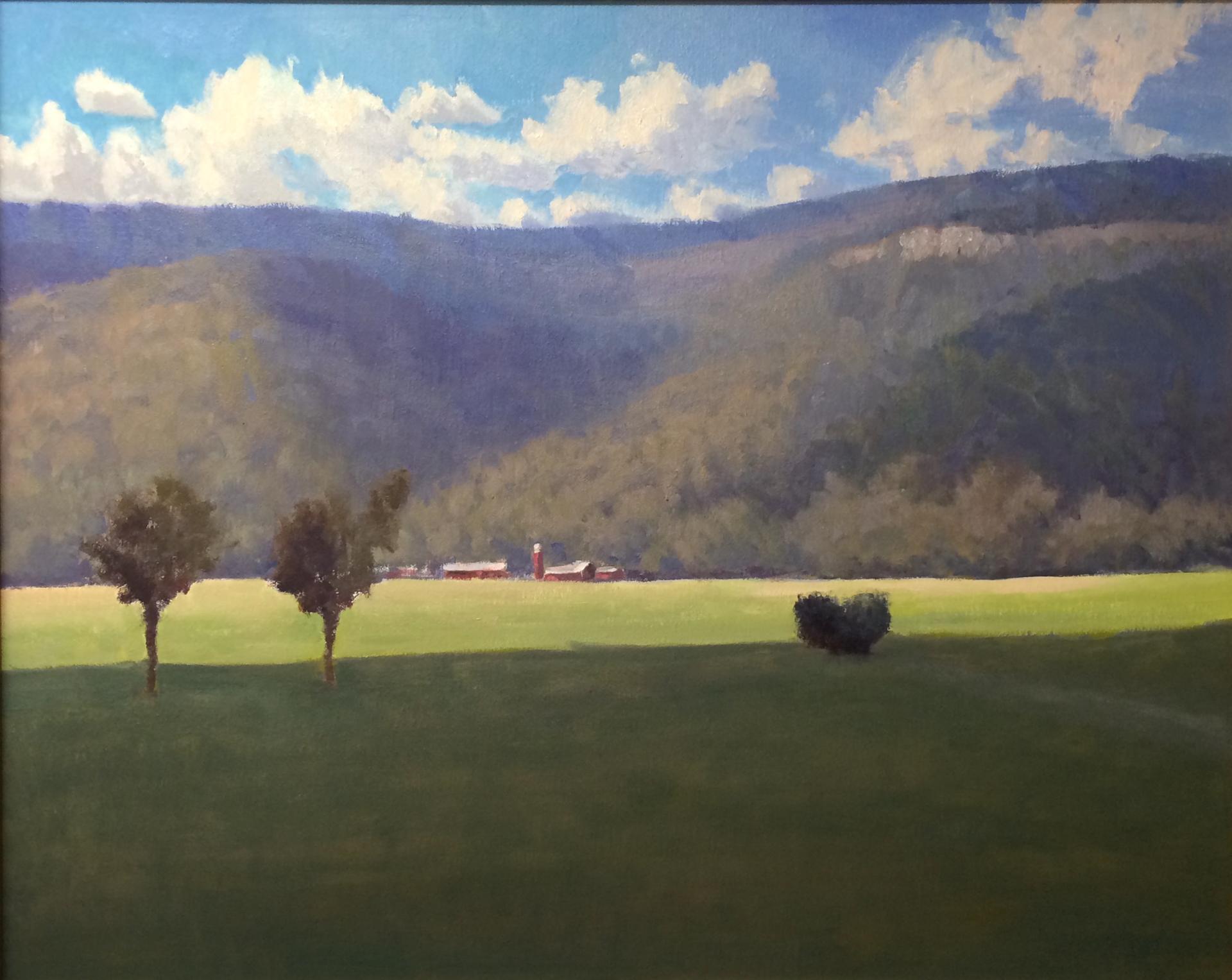 Sunny Day by Joe Mullican