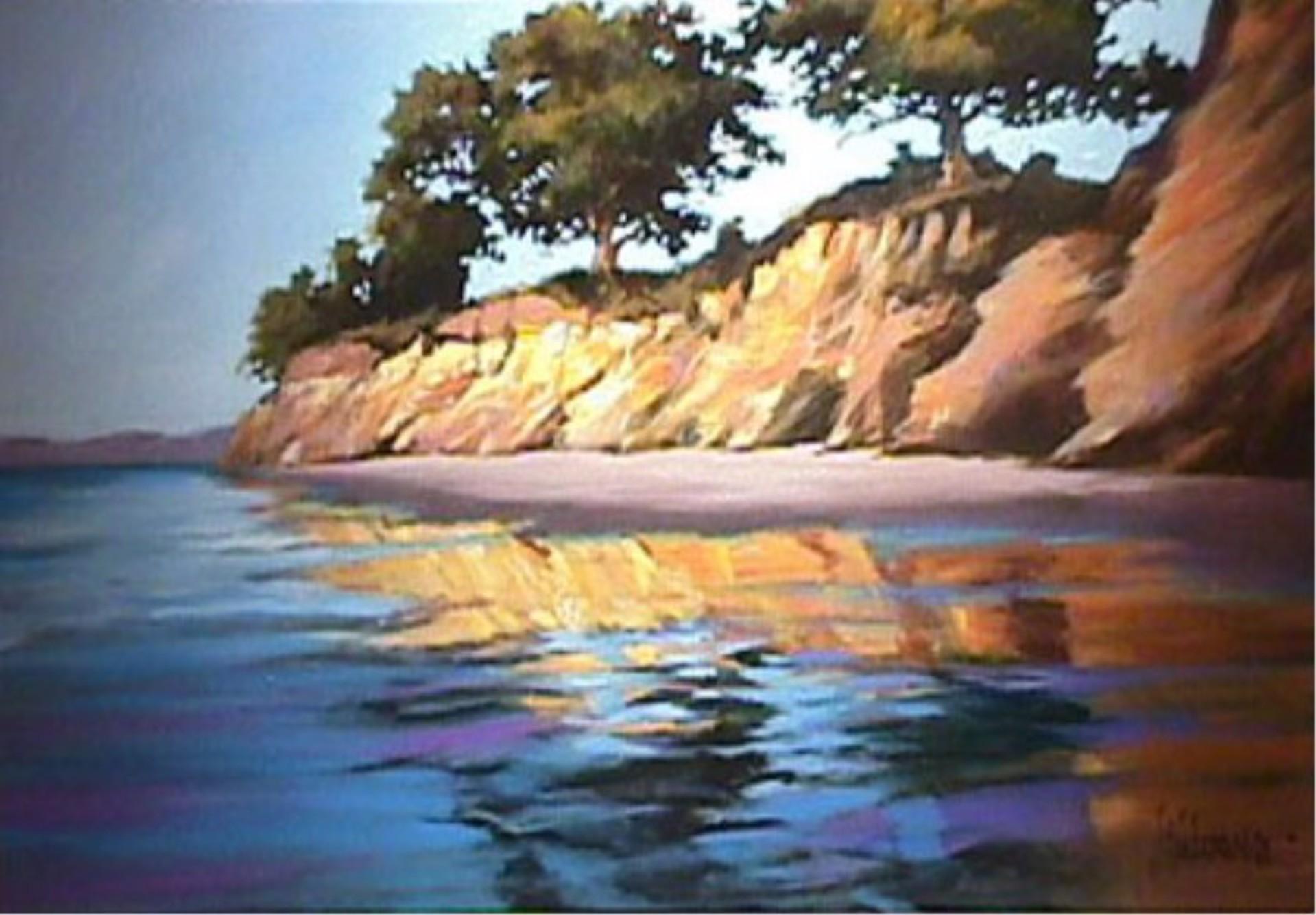 Santa Barbara Cove by Aldo Luongo