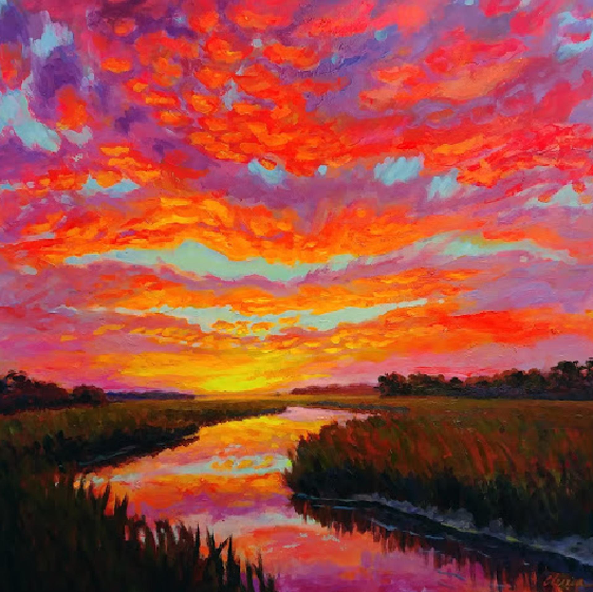 Carolina Sunset by Olessia Maximenko