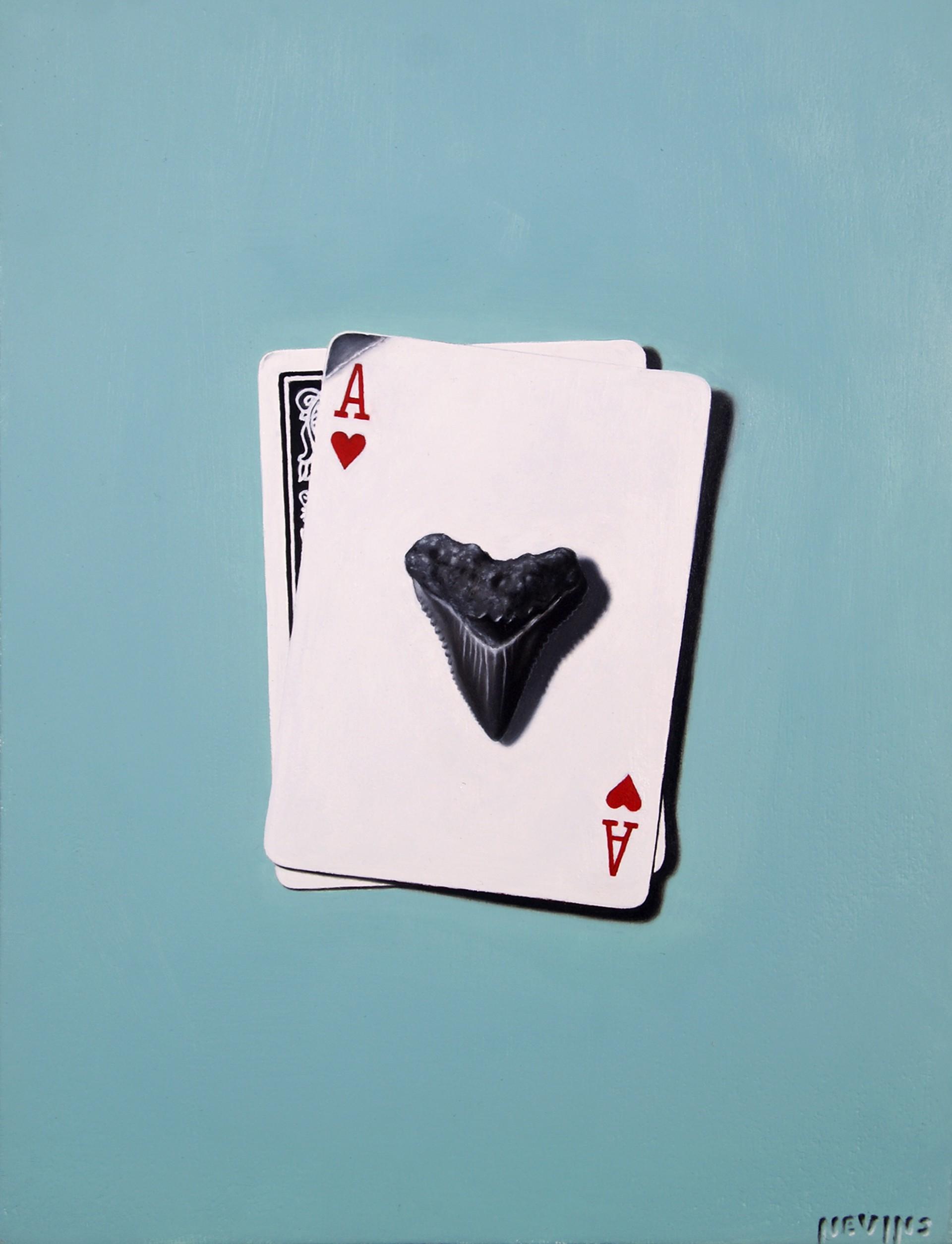 Card Shark  by Patrick Nevins