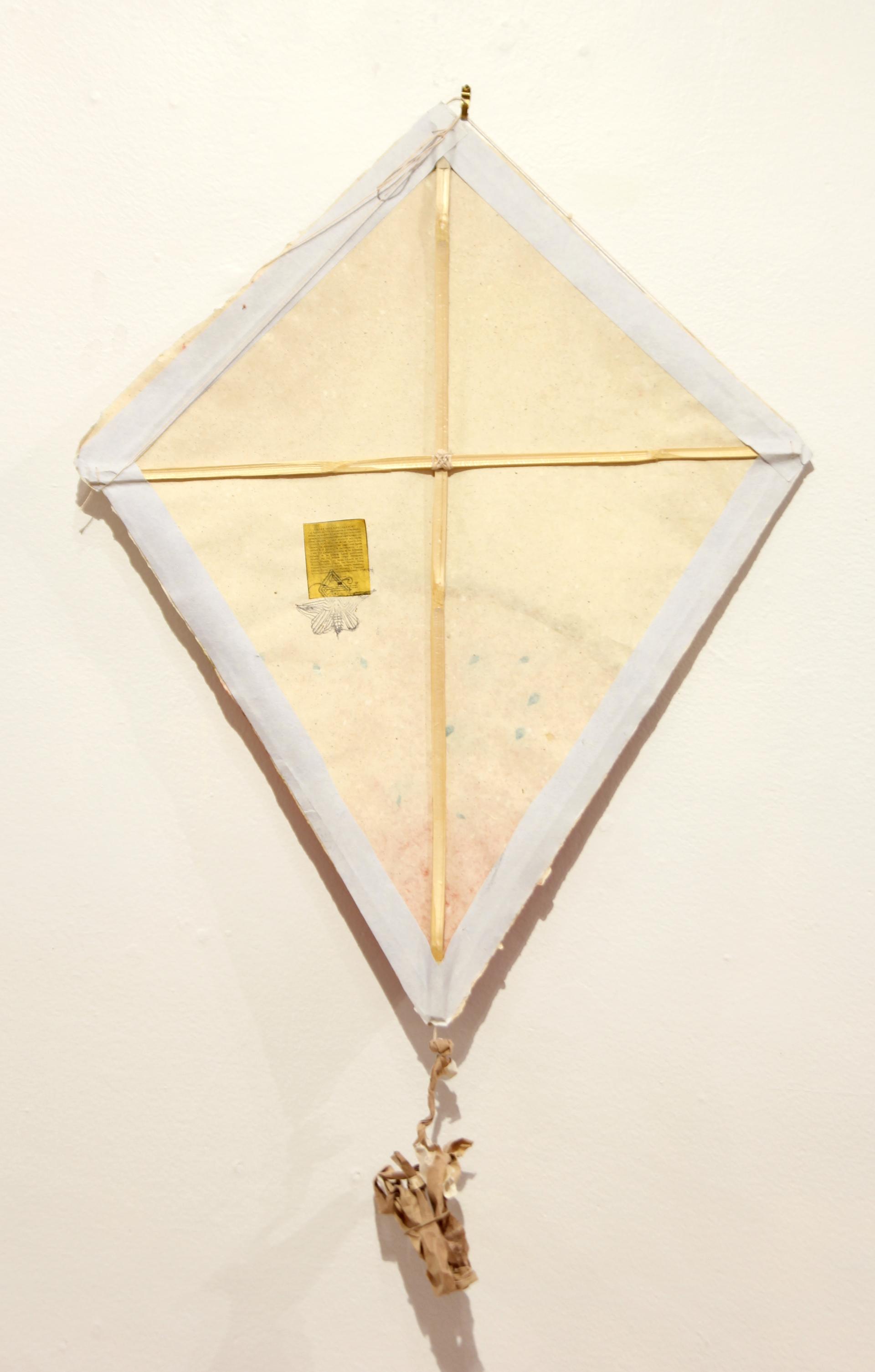 Sandia Kite by Francisco Toledo (1940 - 2019)
