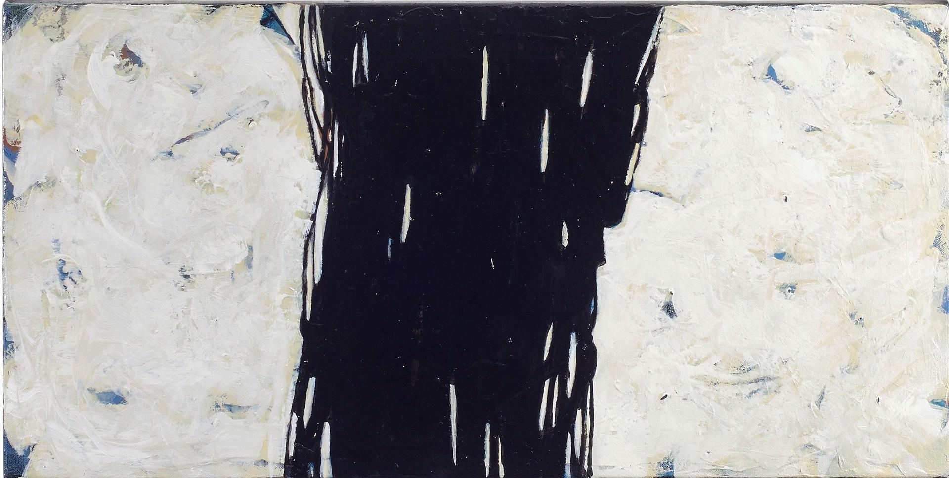 White Night by Helen Bellaver