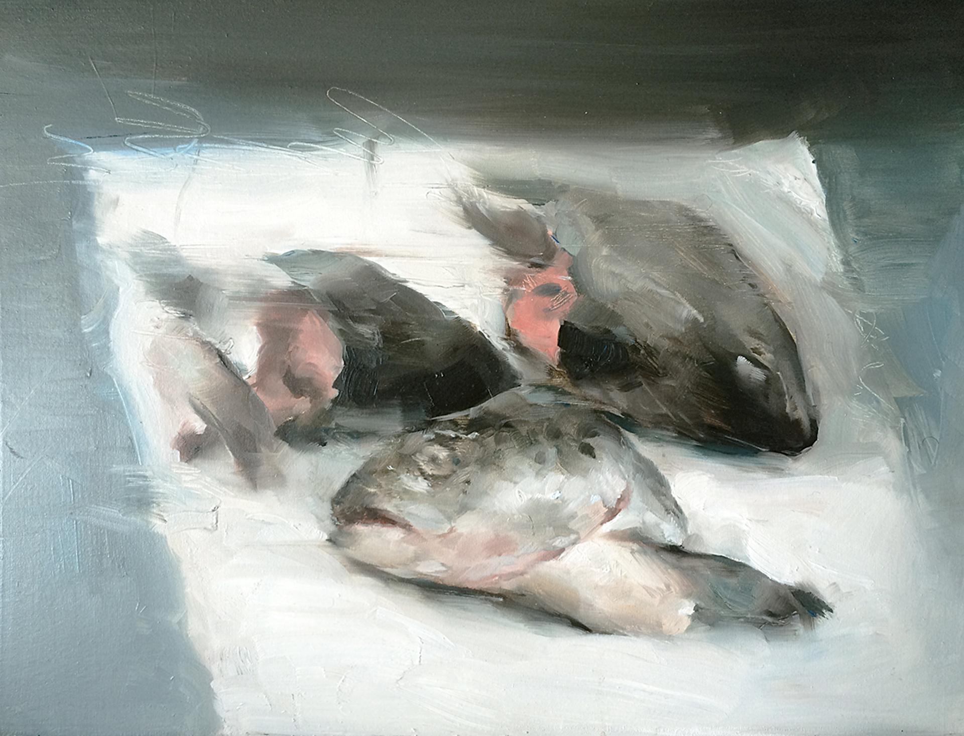 Fish by Britt Snyder