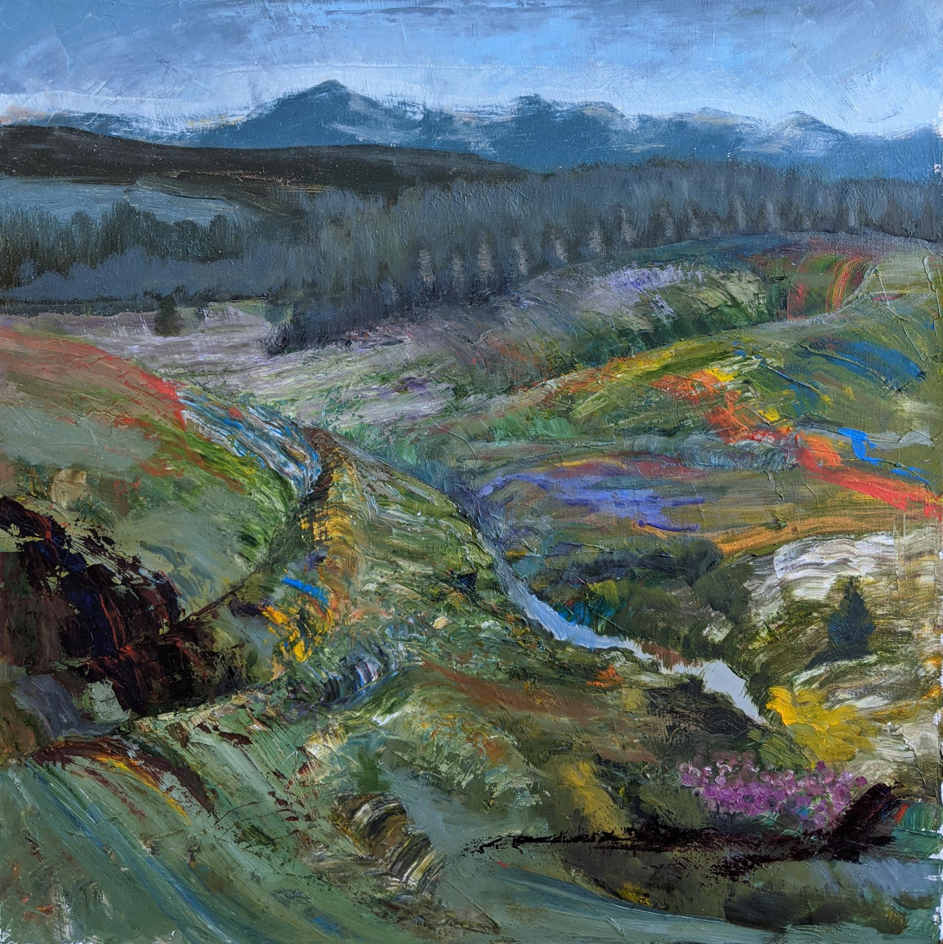Rainbow Valley by Caitlin Hurd