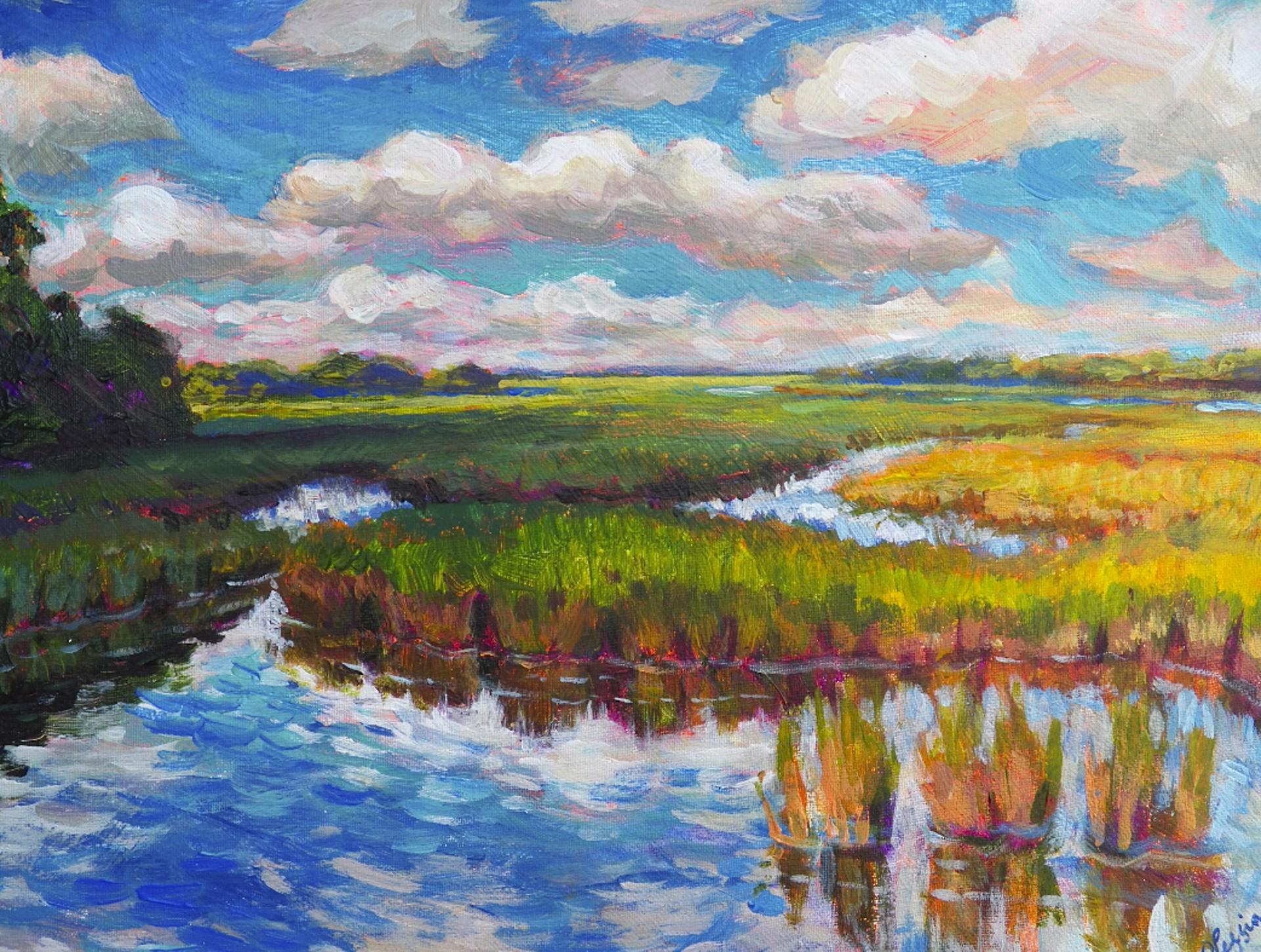 Secret Marsh by Olessia Maximenko