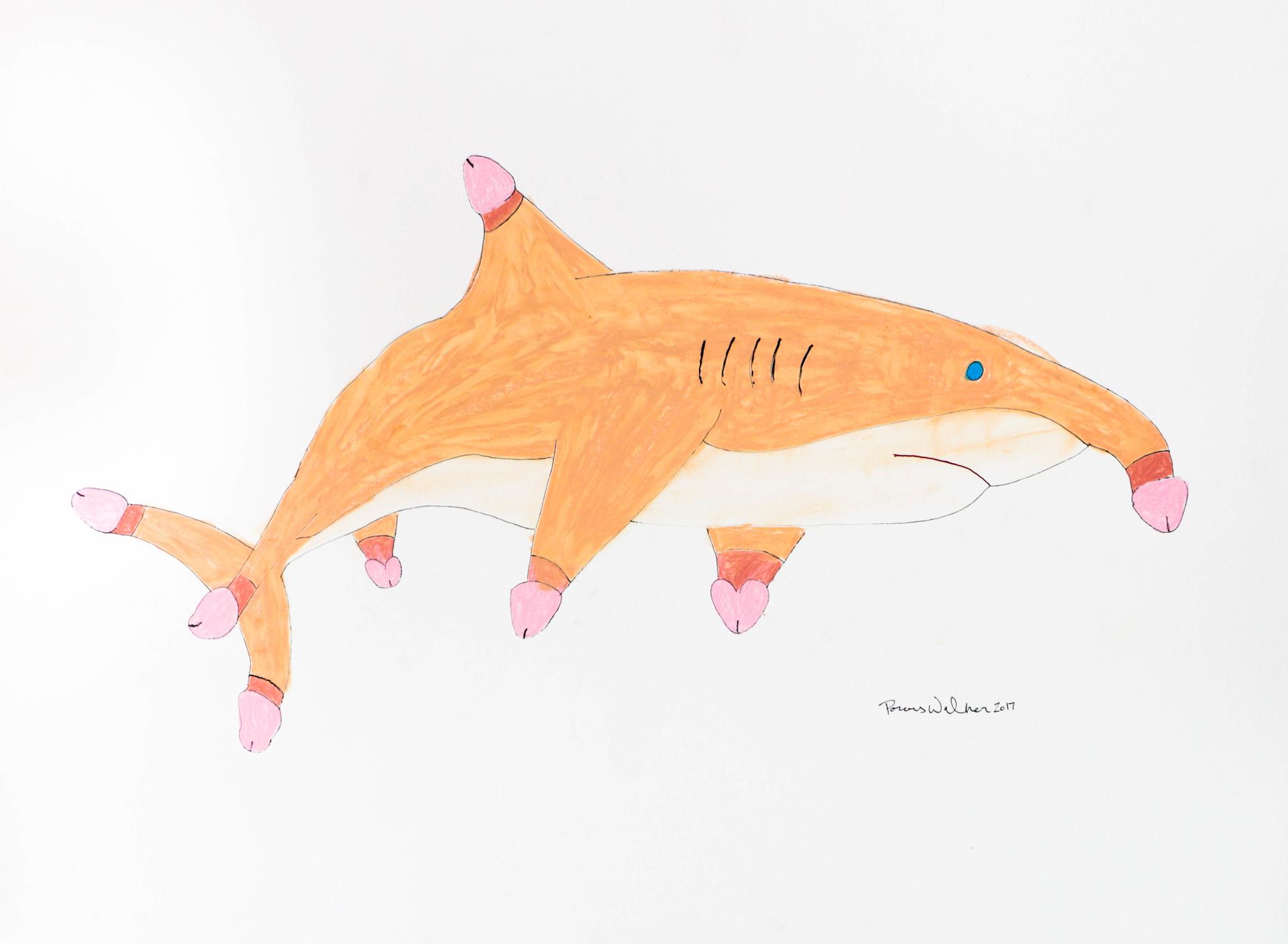 Penis Shark by Porous Walker