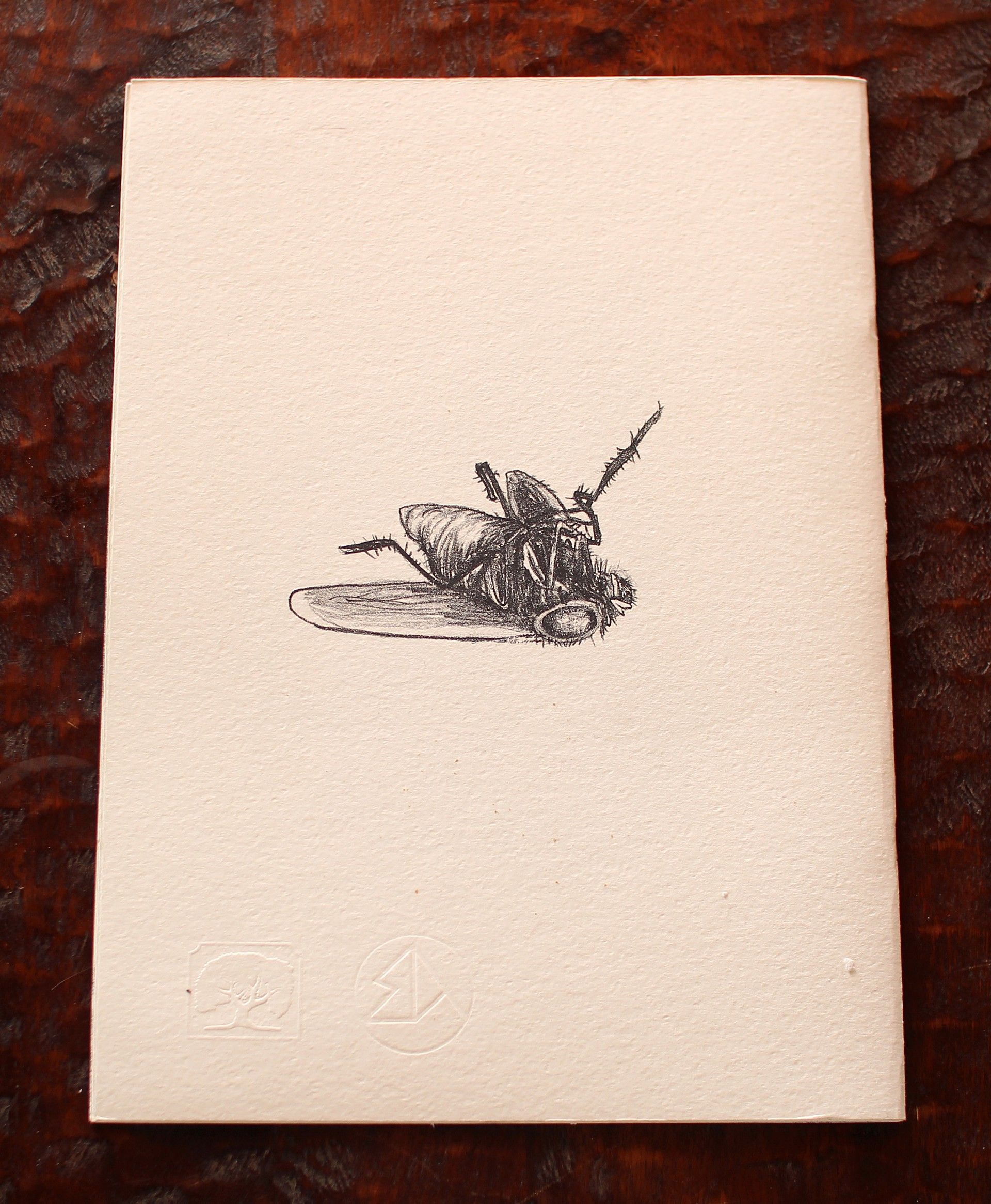 Mosca Muerta by Polvoh Press