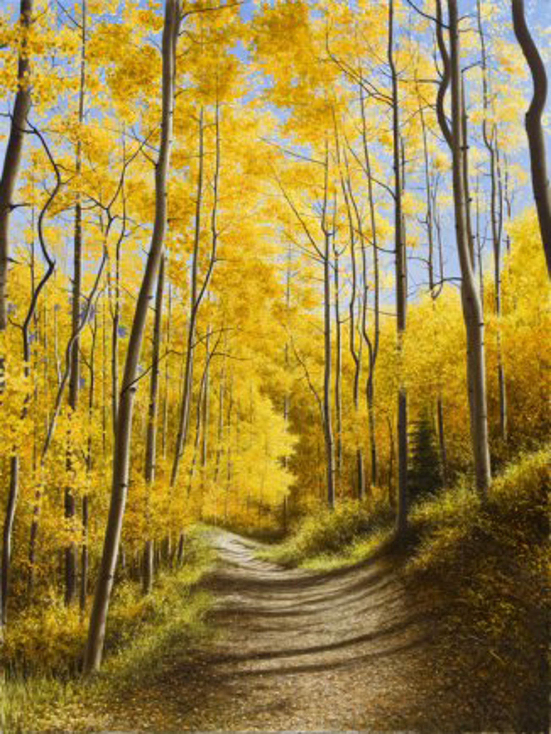 Aspen Path by Alexander Volkov