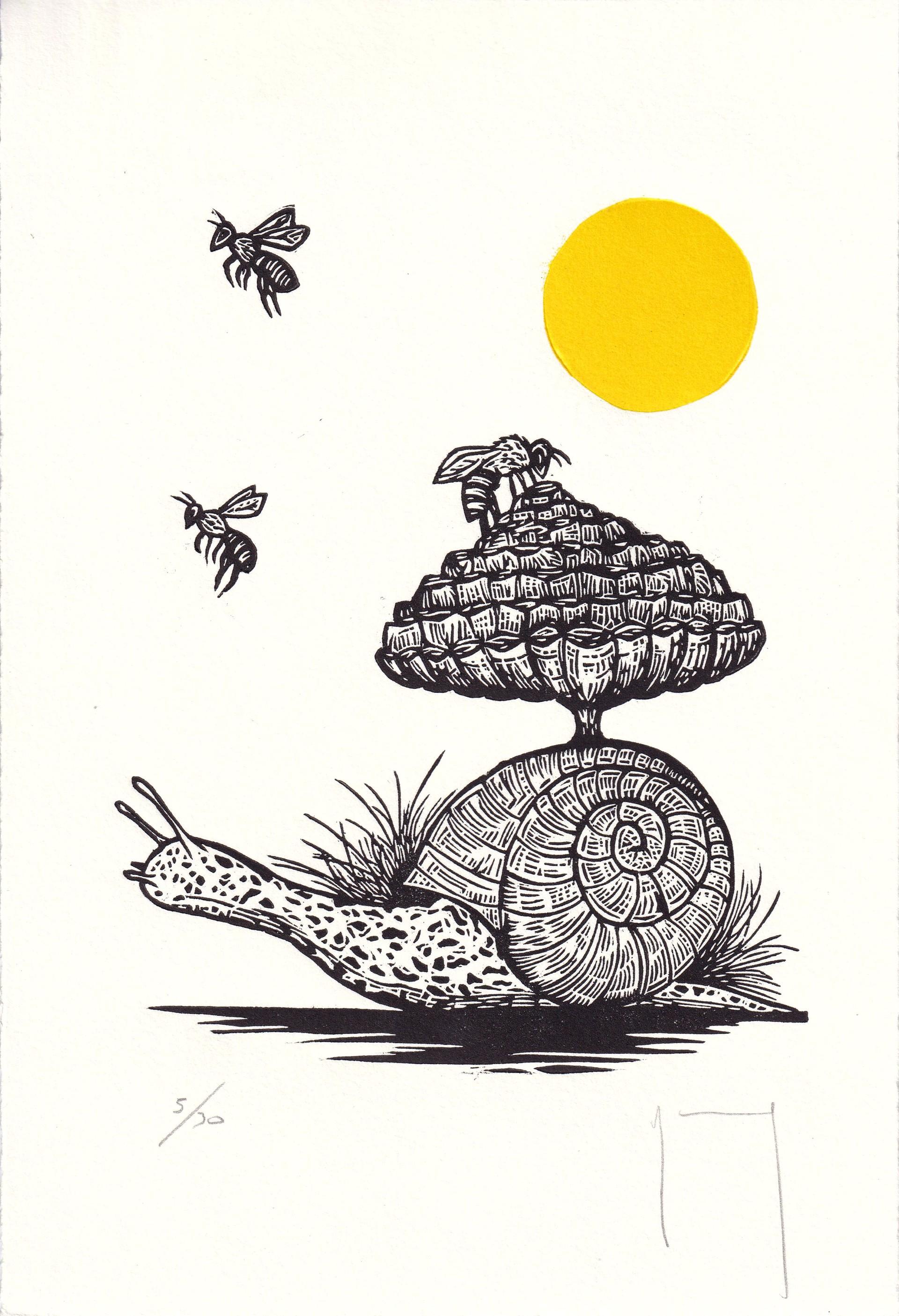 Serie Sol (Caracol y Abejas) by Miguel Jimenez Martinez