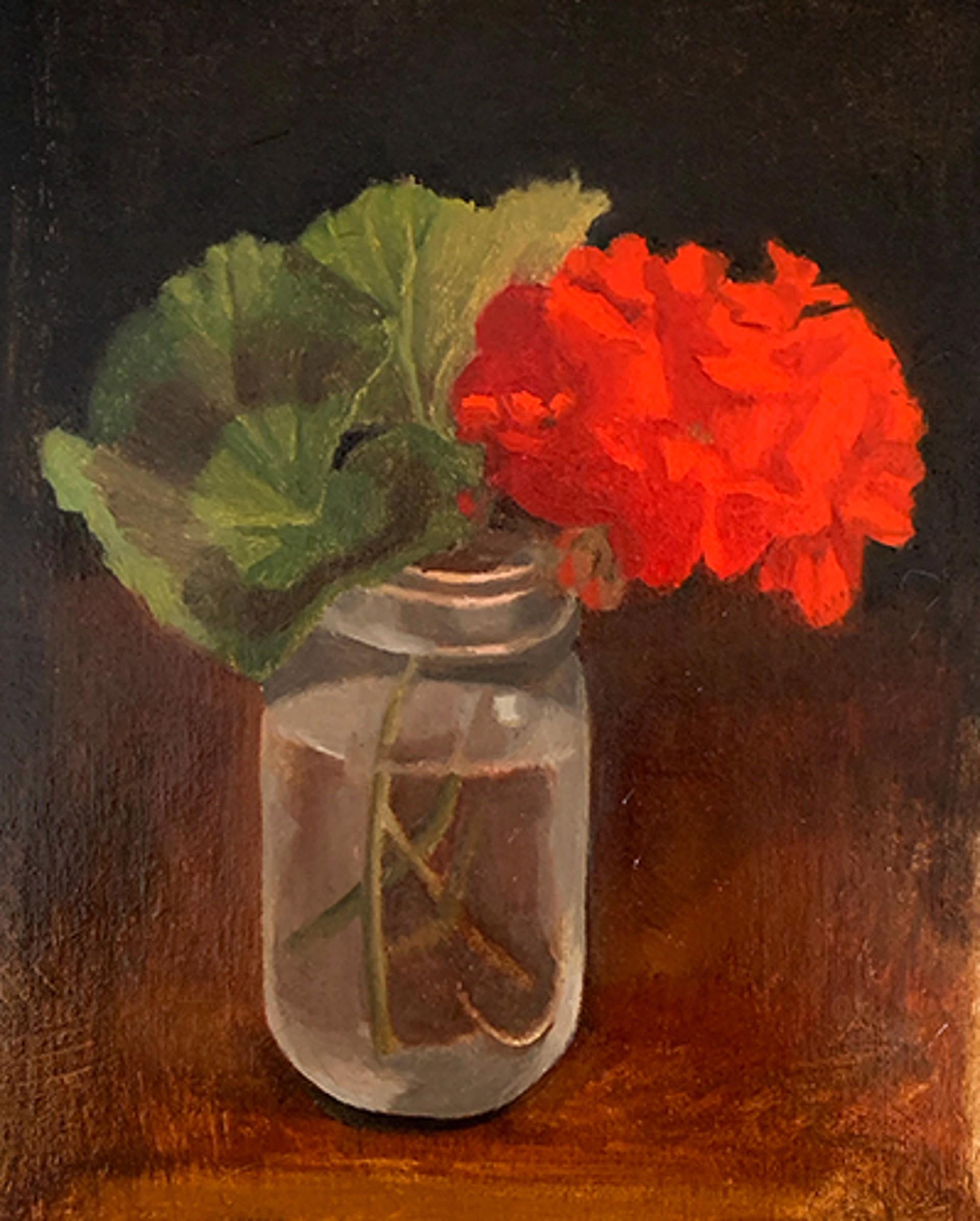 Red Geranium by Laura Murphey