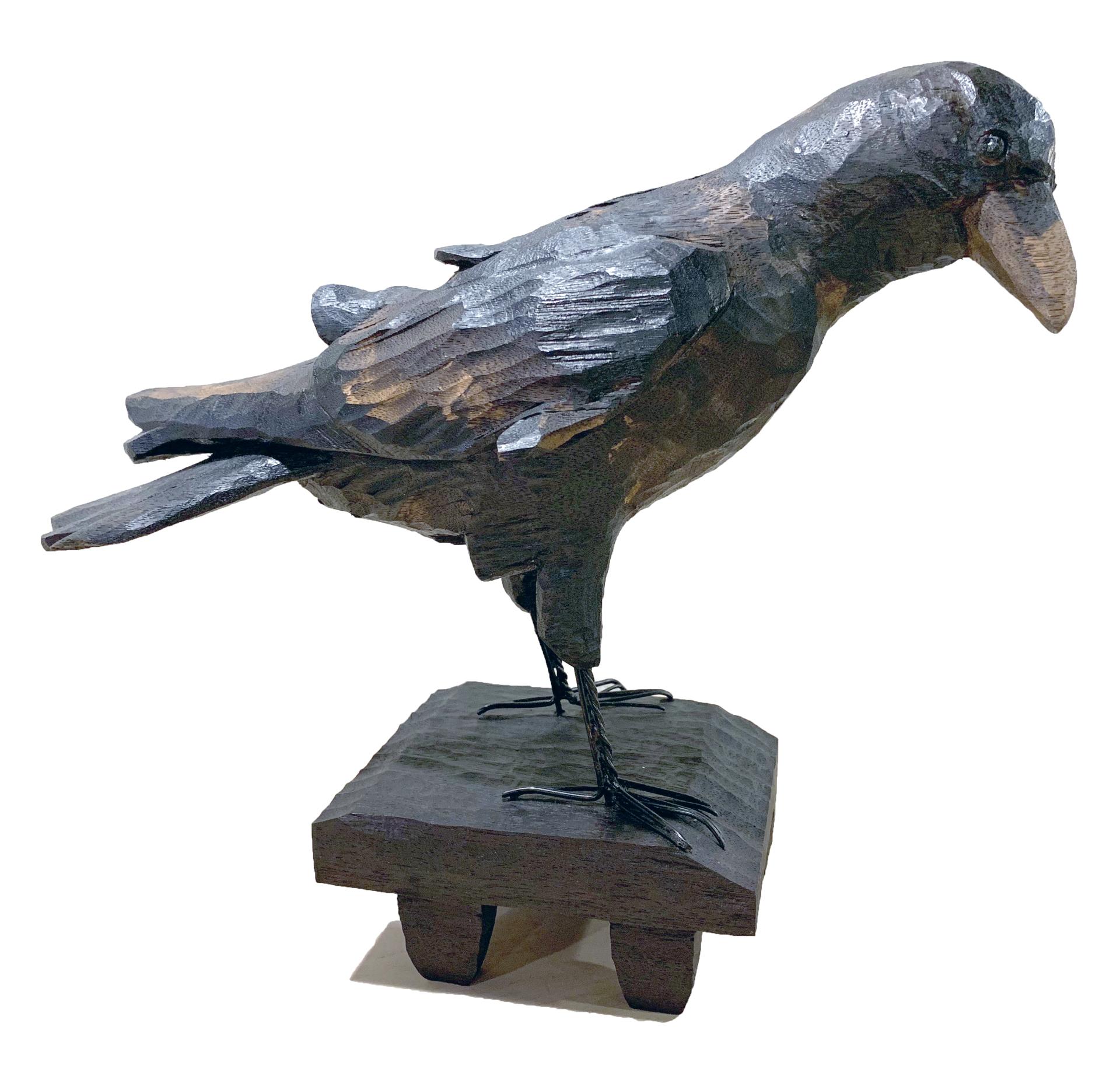 Crow by Elaine Hanowell