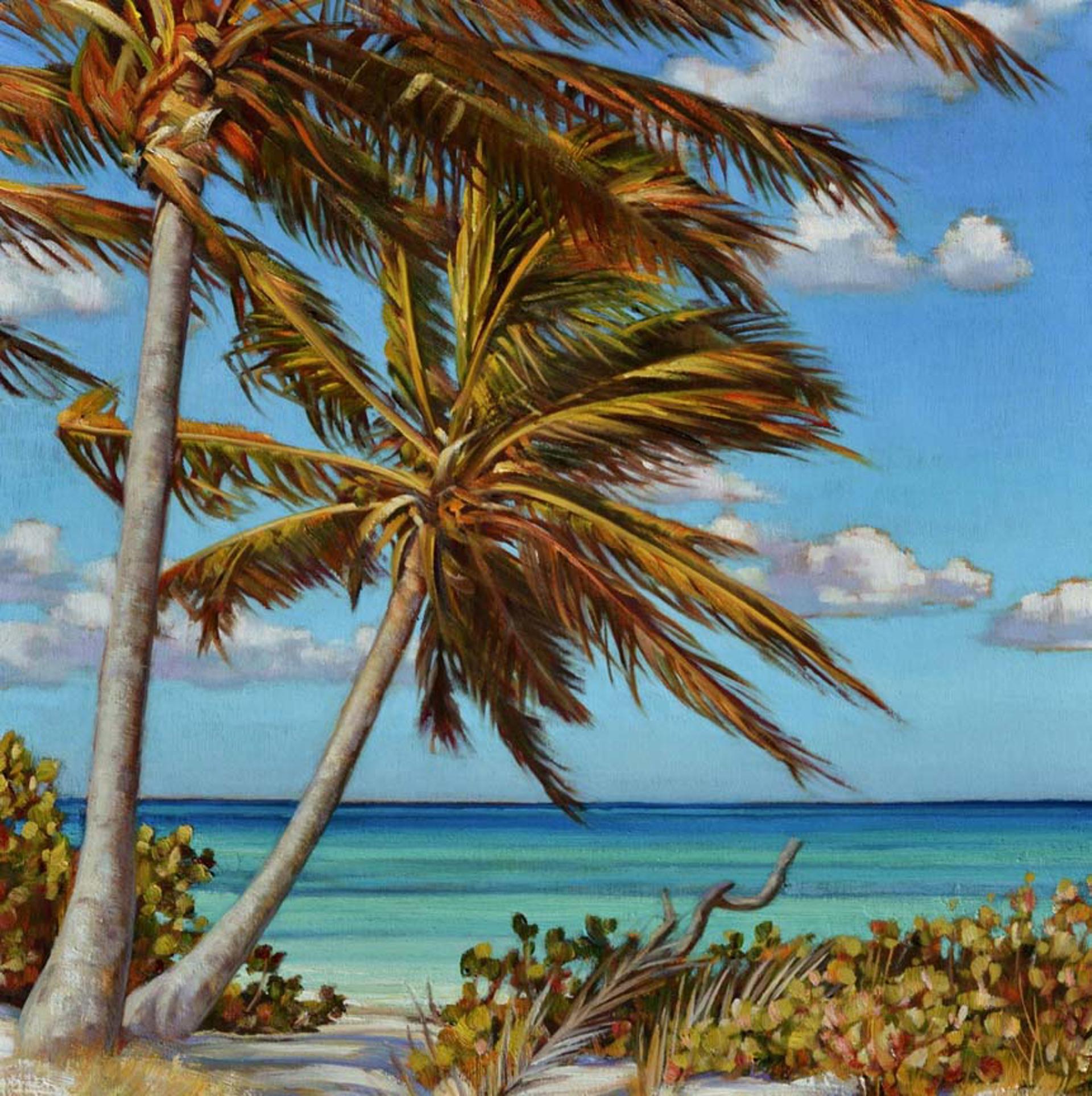 Island Palms  by Caroline Zimmermann