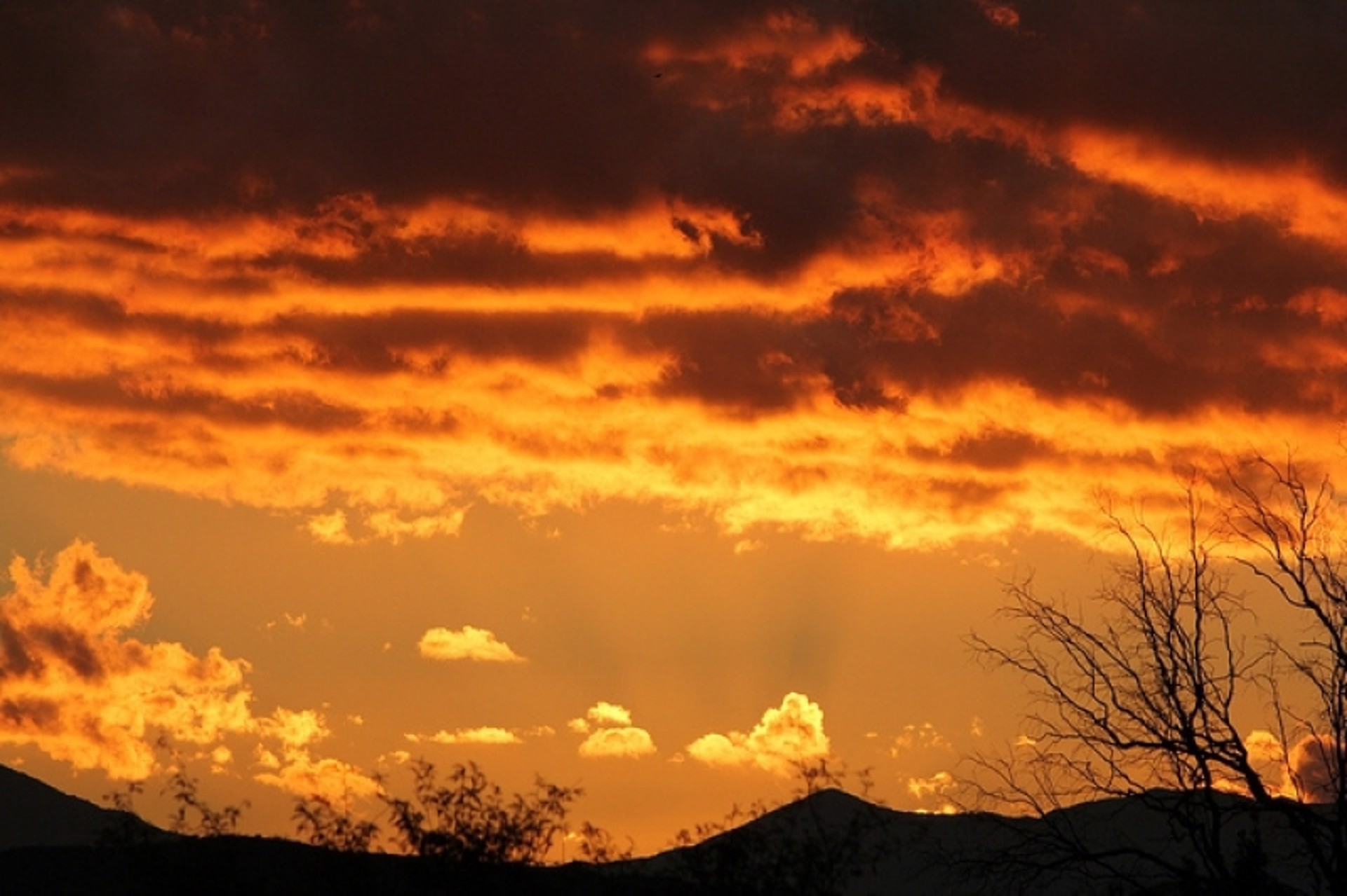Golden Sunrise by John Hays