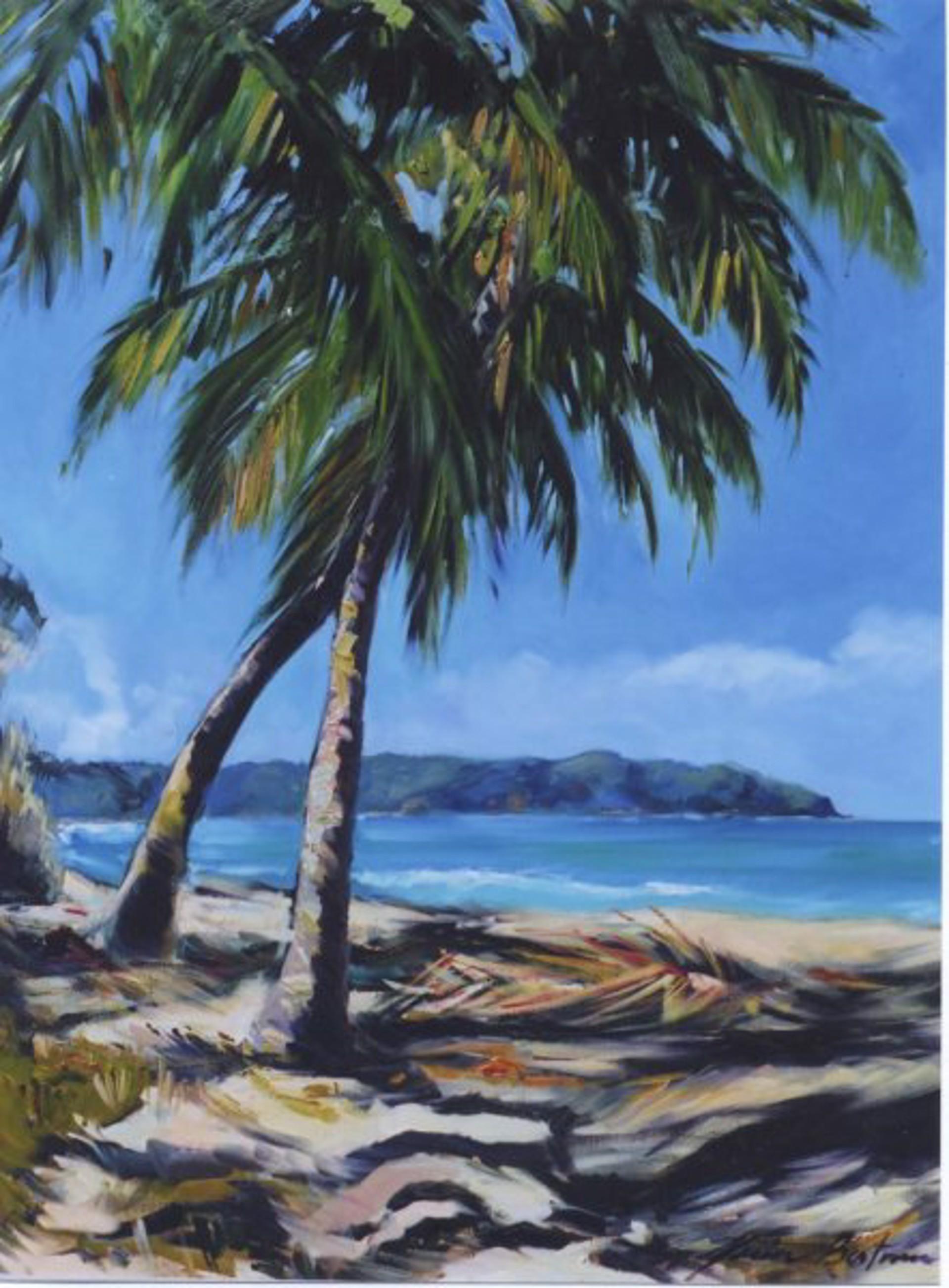 Bertran: Pacific Paradise (Sayulita) by Maria Bertrán