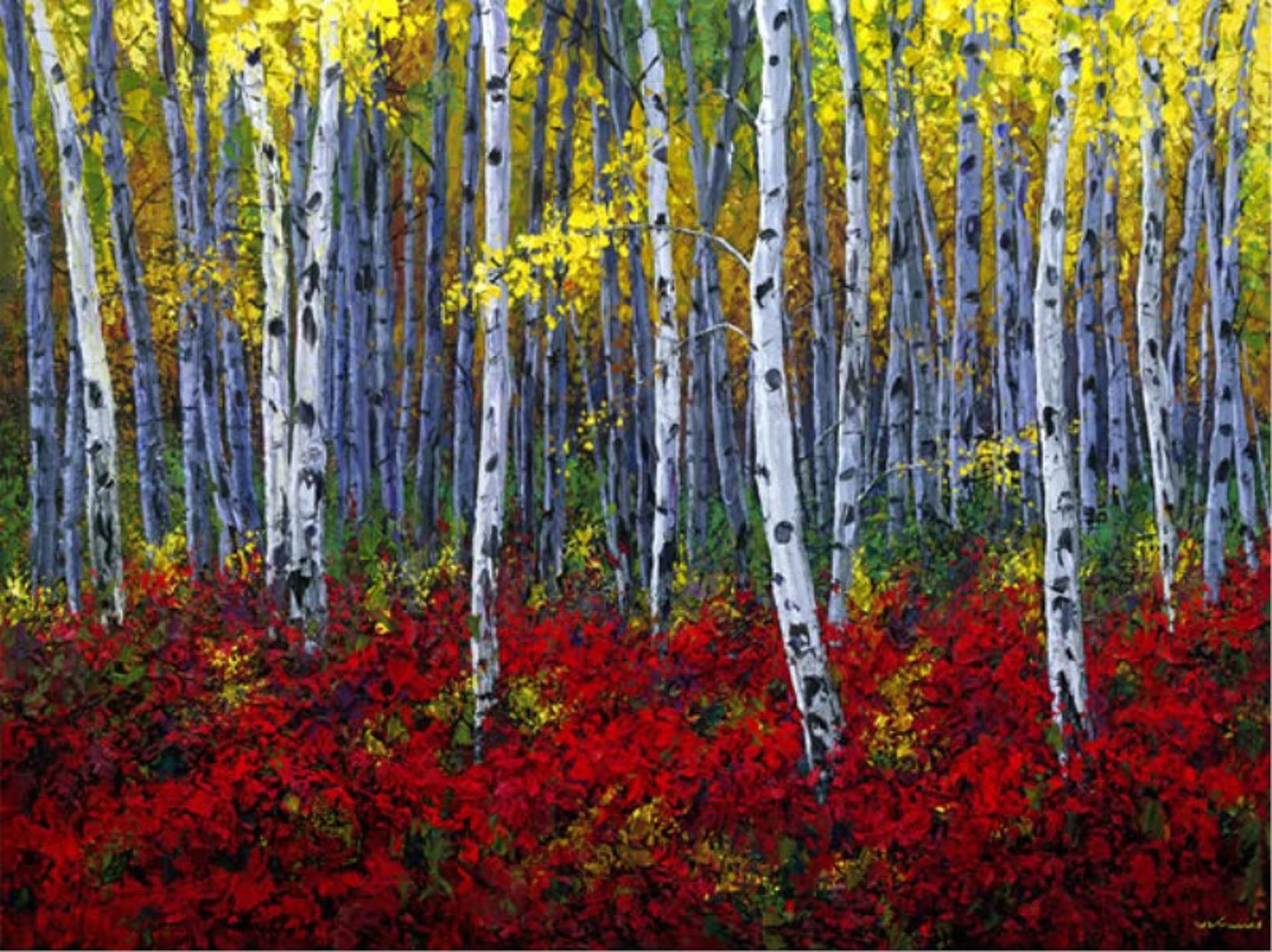 Crimson Forest by Jennifer Vranes