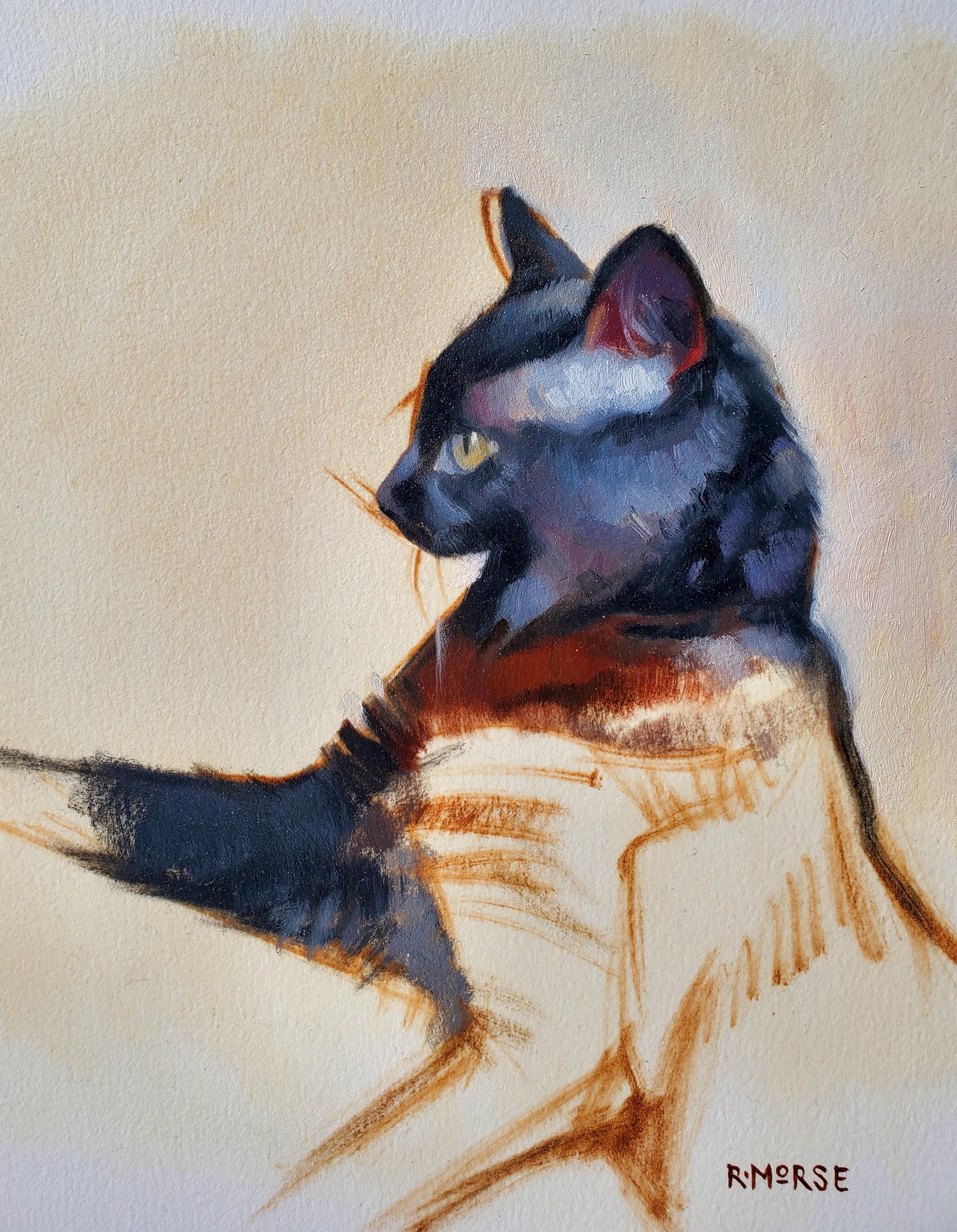 Black Cat by Ryan Morse