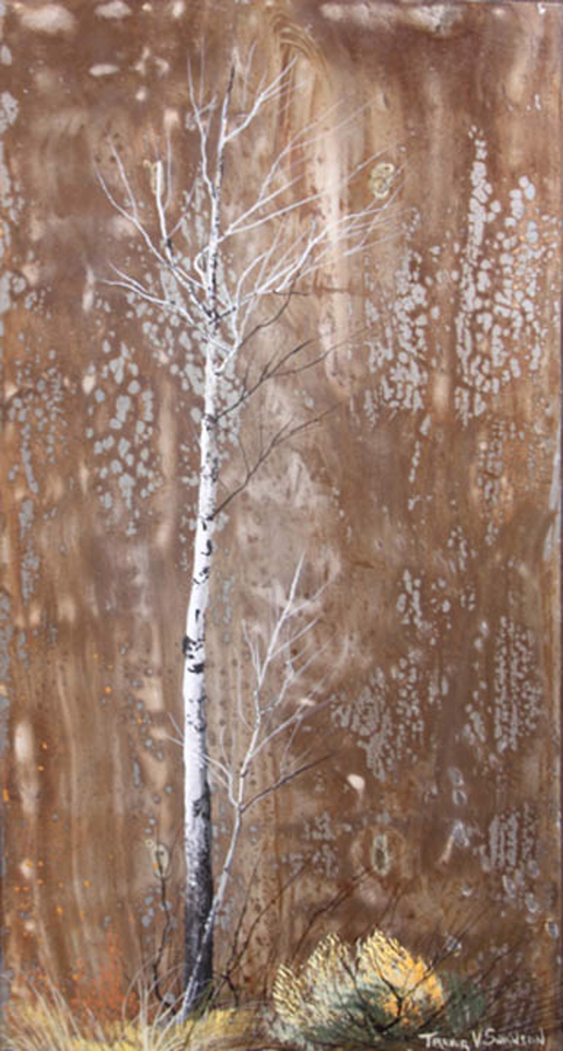 Aspen Aurora by Trevor Swanson