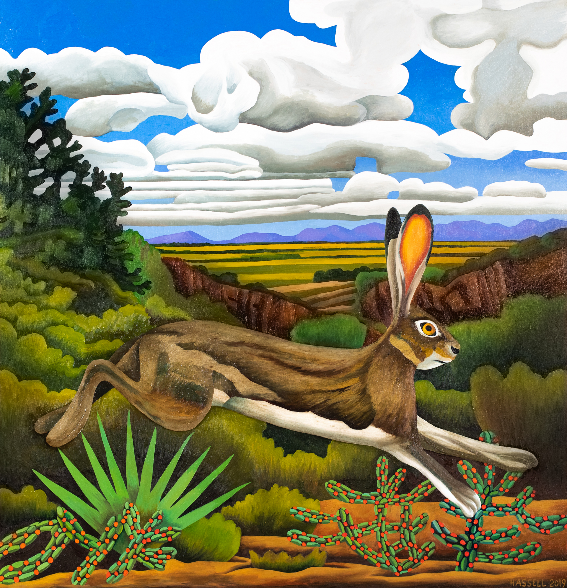 Jackrabbit, West Texas by Billy Hassell